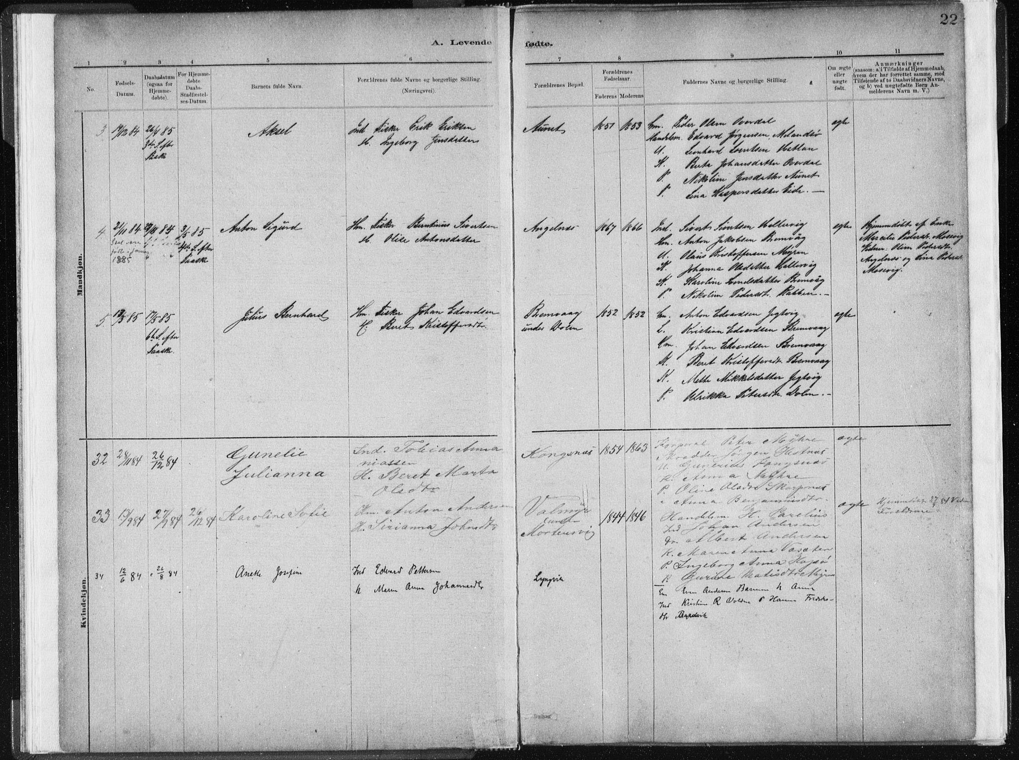 SAT, Ministerialprotokoller, klokkerbøker og fødselsregistre - Sør-Trøndelag, 634/L0533: Ministerialbok nr. 634A09, 1882-1901, s. 22