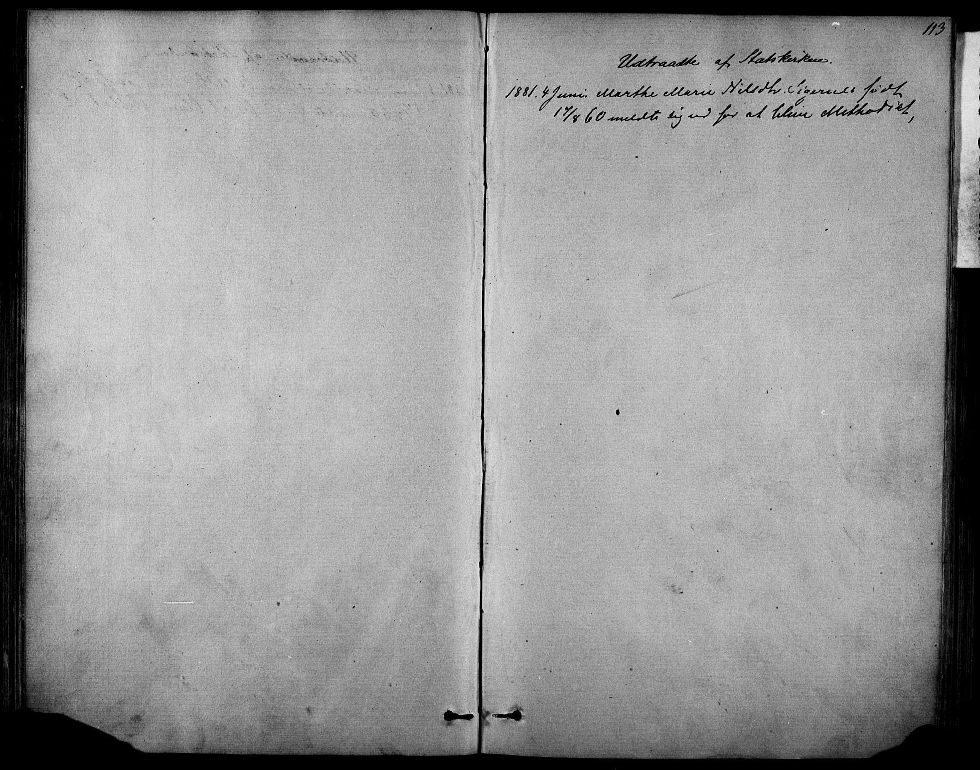 SAKO, Sannidal kirkebøker, F/Fa/L0014: Ministerialbok nr. 14, 1874-1883, s. 113