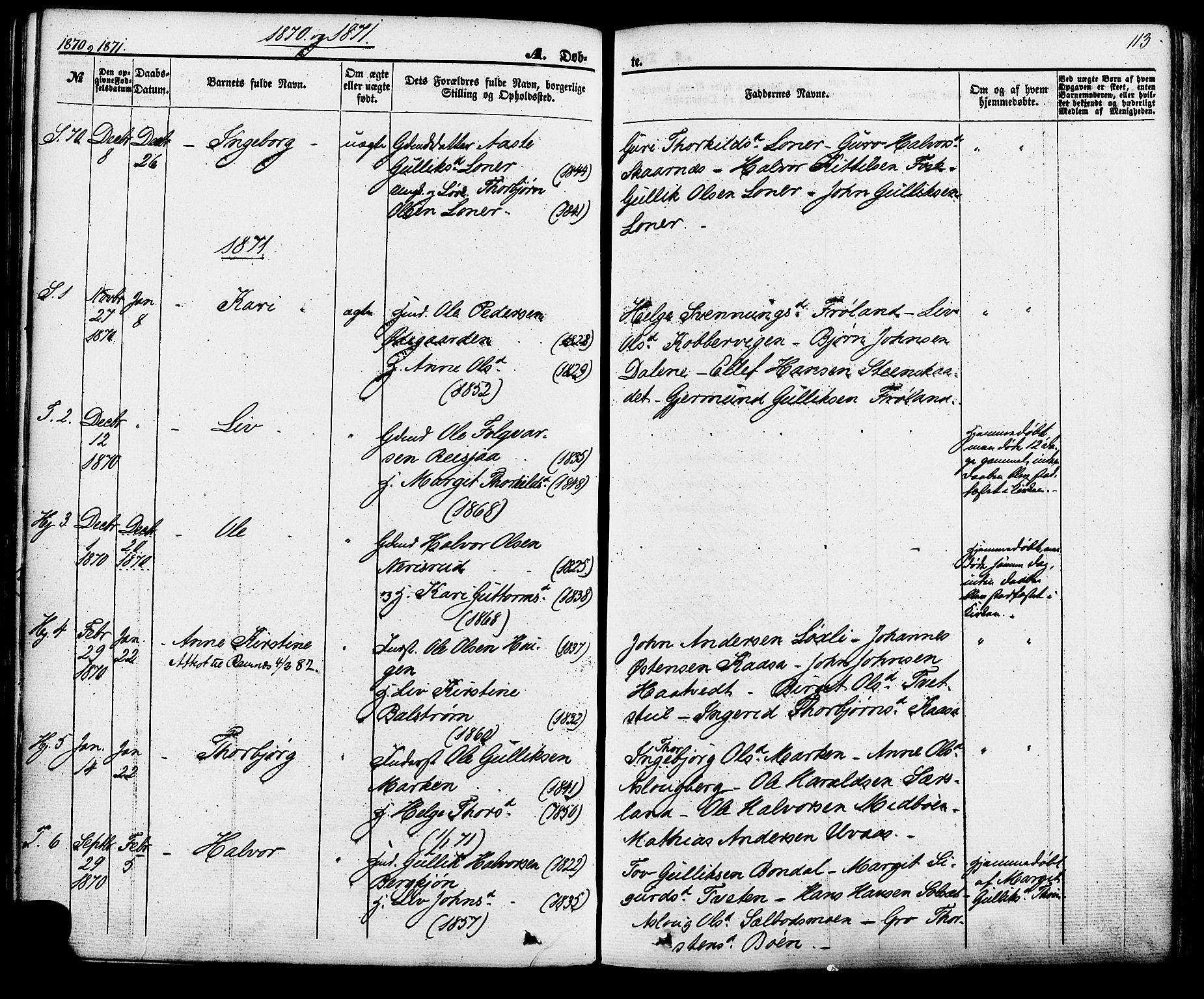 SAKO, Hjartdal kirkebøker, F/Fa/L0009: Ministerialbok nr. I 9, 1860-1879, s. 113