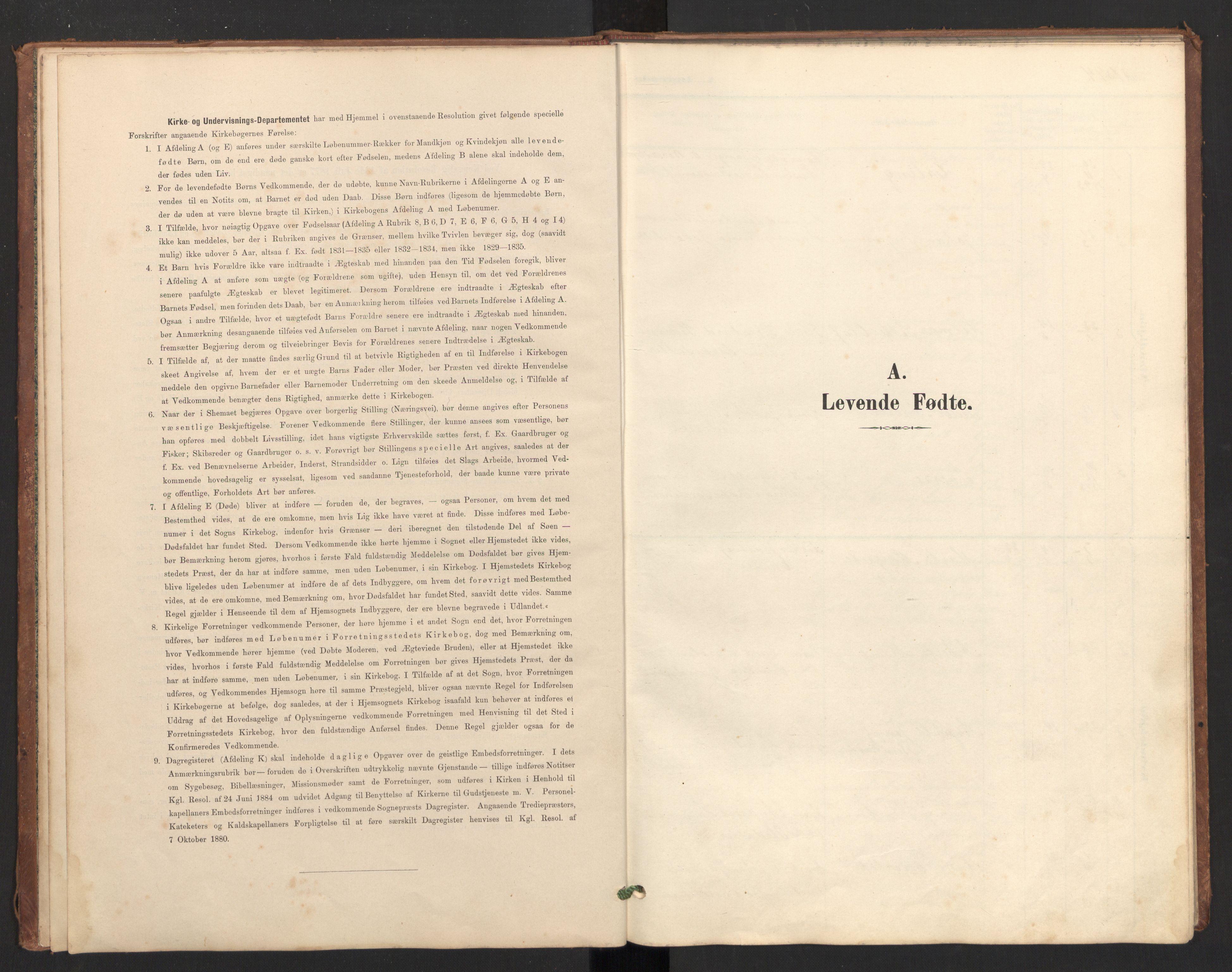 SAT, Ministerialprotokoller, klokkerbøker og fødselsregistre - Nordland, 804/L0087: Ministerialbok nr. 804A08, 1894-1907