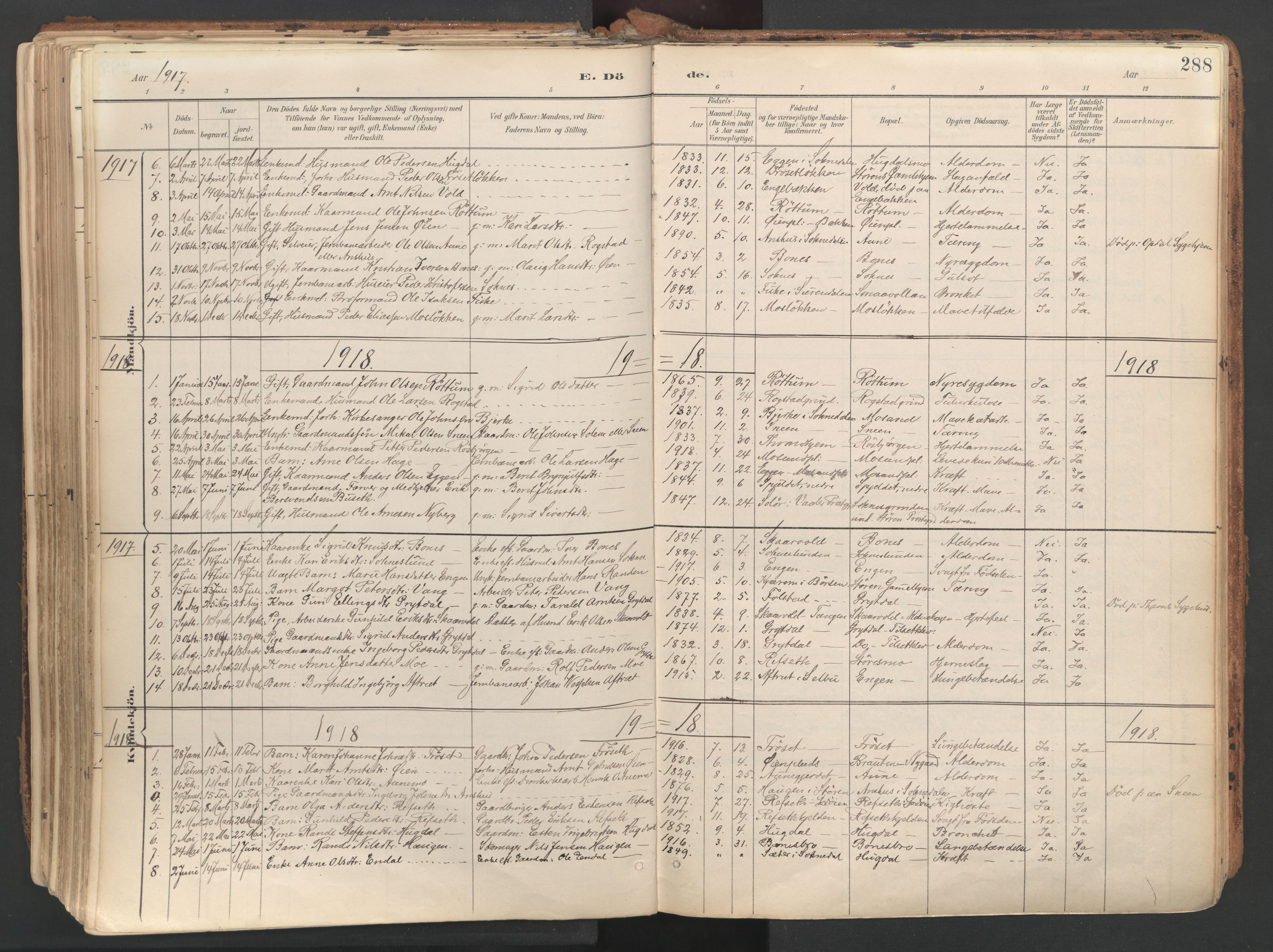 SAT, Ministerialprotokoller, klokkerbøker og fødselsregistre - Sør-Trøndelag, 687/L1004: Ministerialbok nr. 687A10, 1891-1923, s. 288