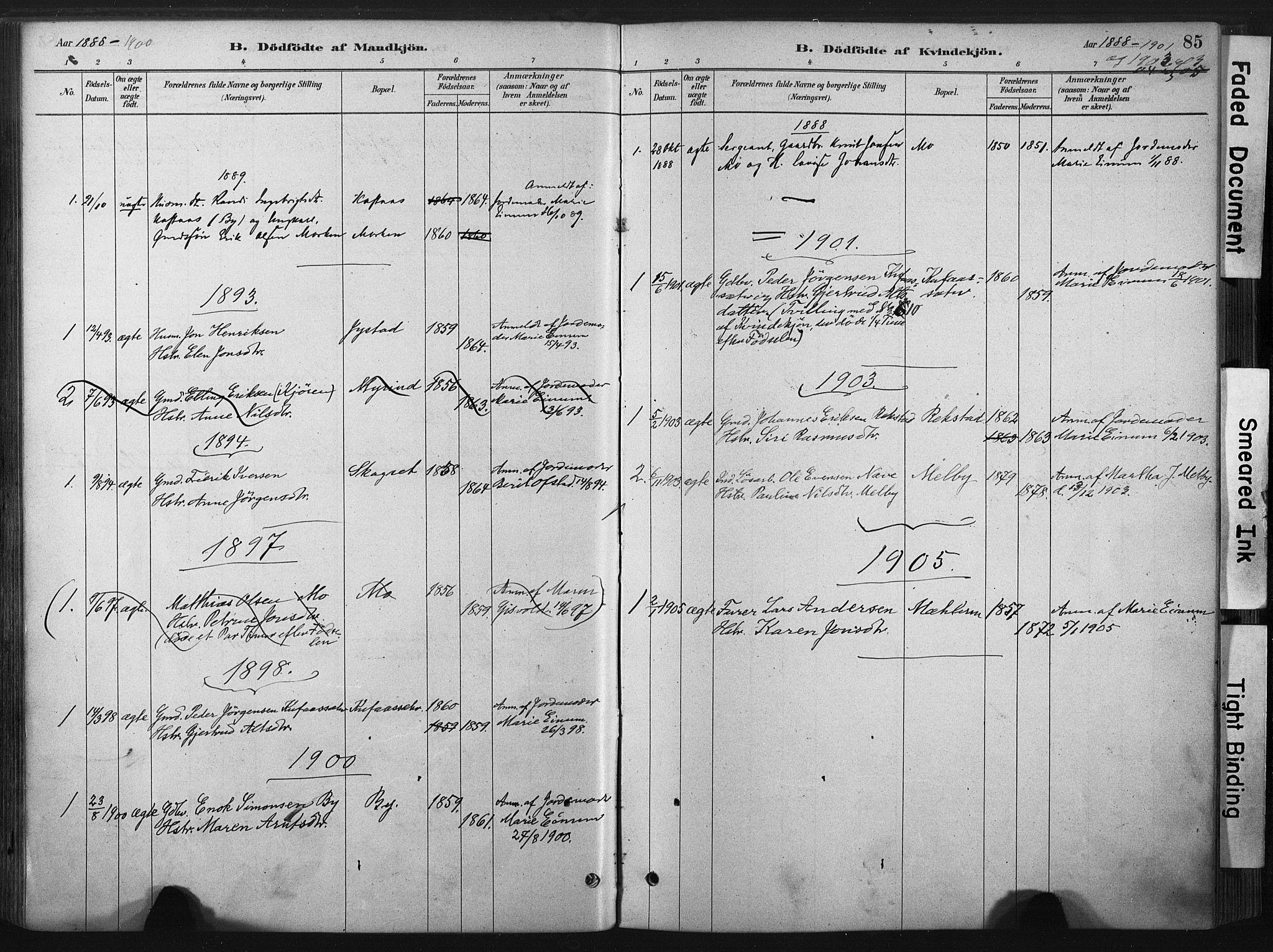 SAT, Ministerialprotokoller, klokkerbøker og fødselsregistre - Sør-Trøndelag, 667/L0795: Ministerialbok nr. 667A03, 1879-1907, s. 85