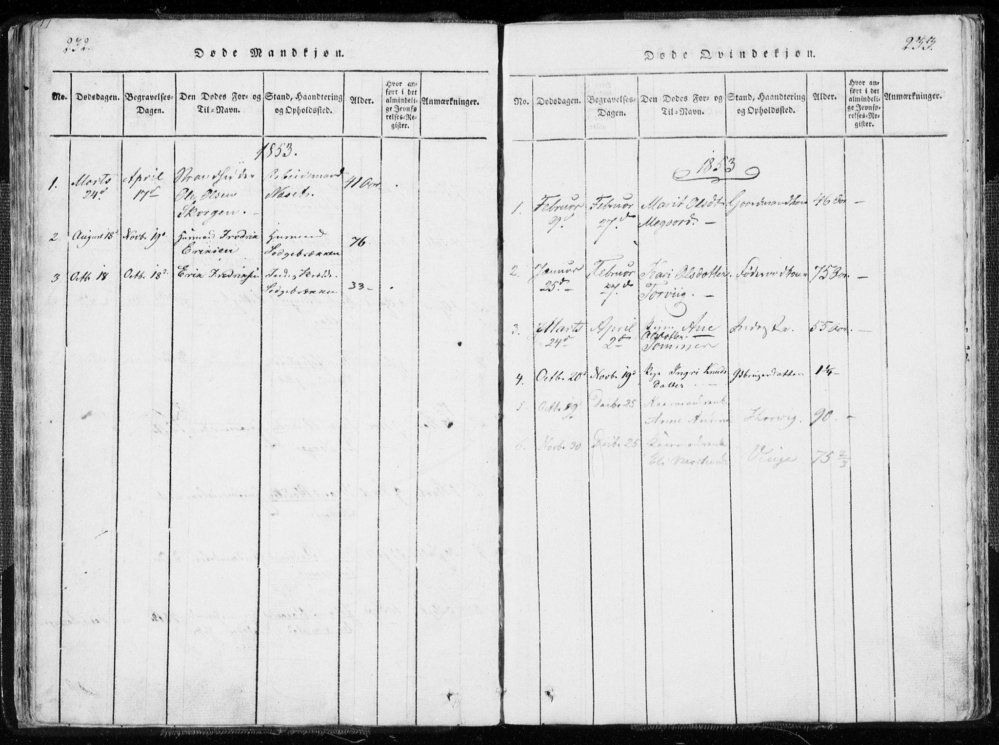 SAT, Ministerialprotokoller, klokkerbøker og fødselsregistre - Møre og Romsdal, 544/L0571: Ministerialbok nr. 544A04, 1818-1853, s. 232-233