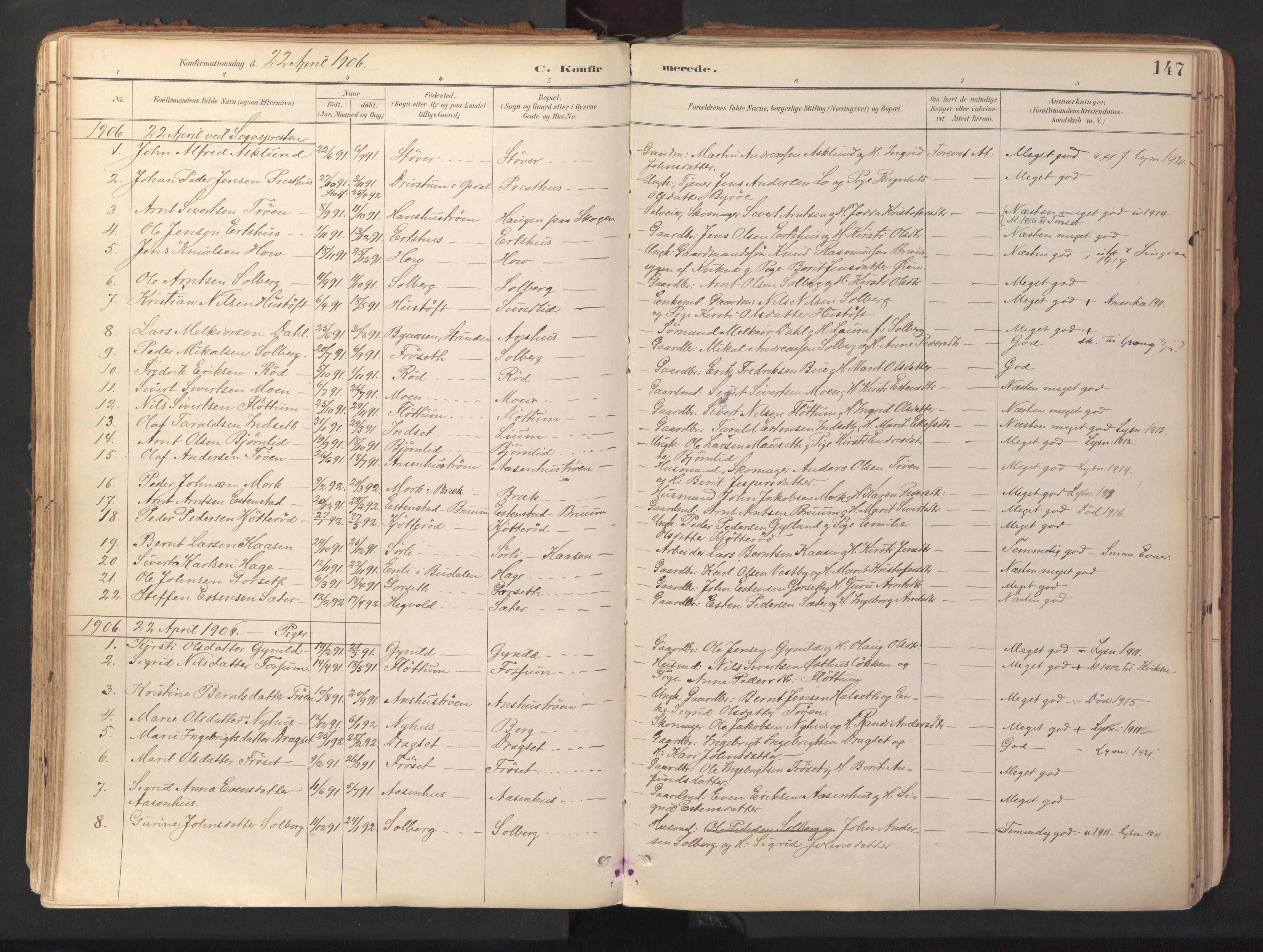 SAT, Ministerialprotokoller, klokkerbøker og fødselsregistre - Sør-Trøndelag, 689/L1041: Ministerialbok nr. 689A06, 1891-1923, s. 147