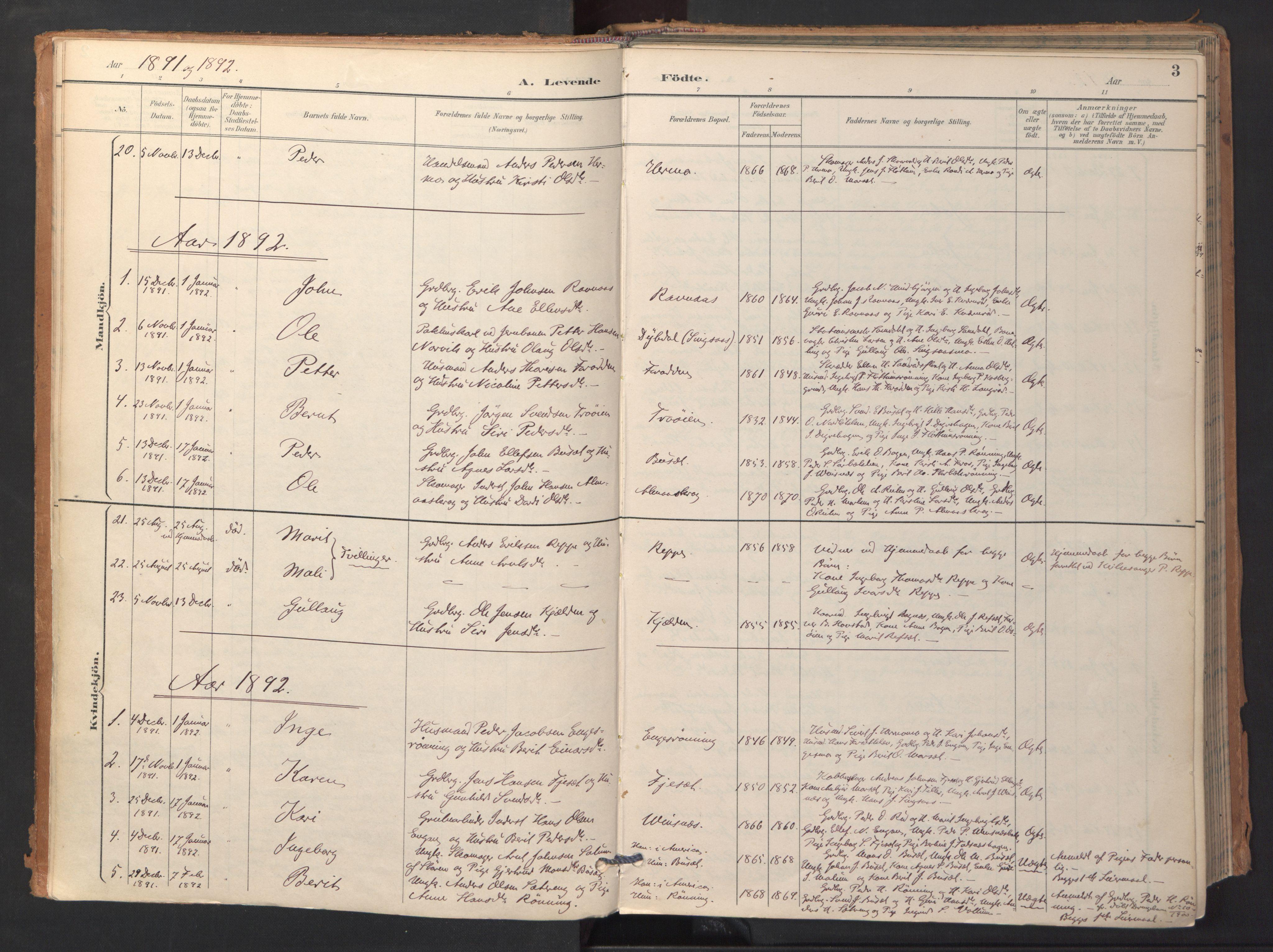 SAT, Ministerialprotokoller, klokkerbøker og fødselsregistre - Sør-Trøndelag, 688/L1025: Ministerialbok nr. 688A02, 1891-1909, s. 3