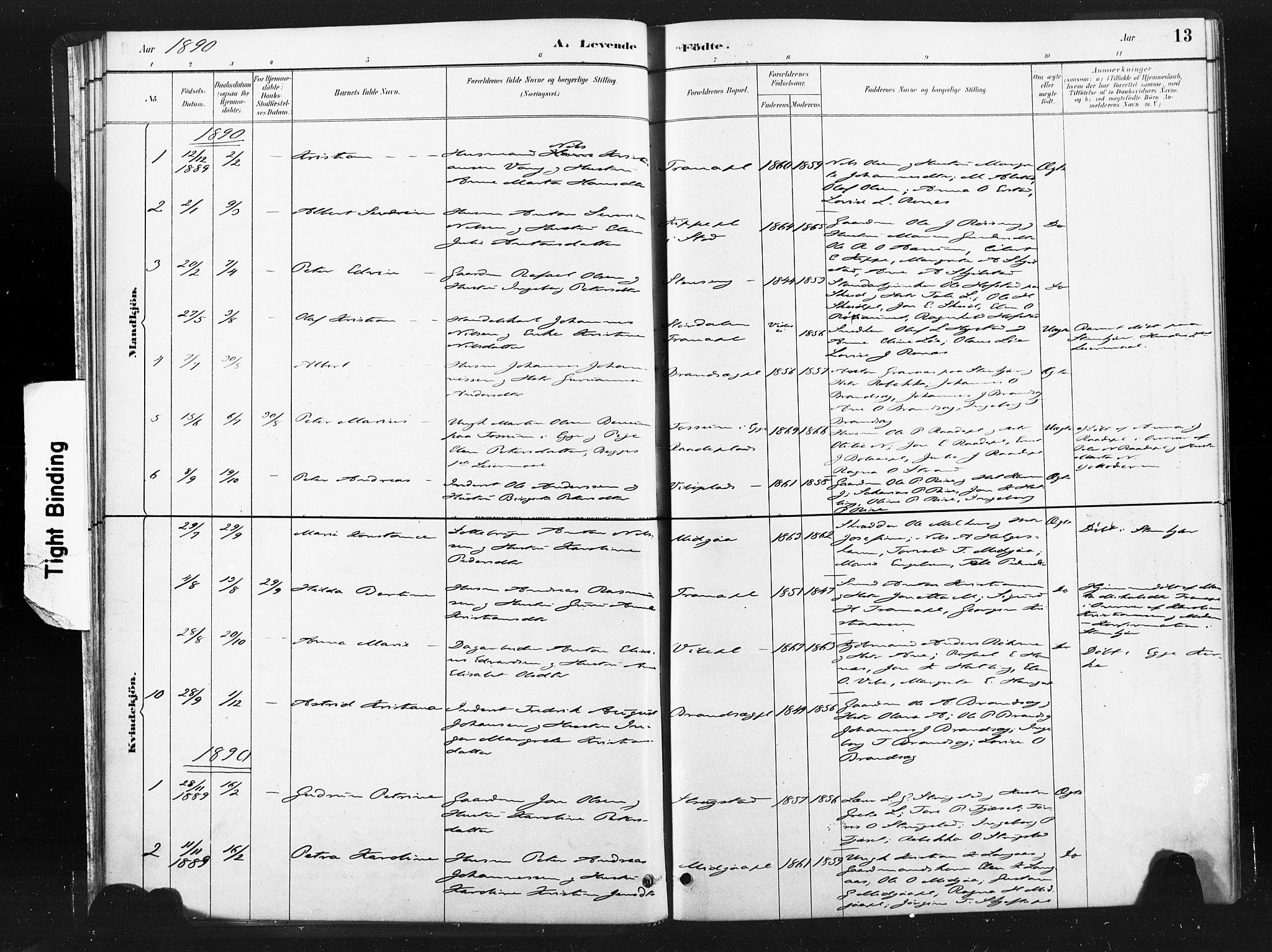 SAT, Ministerialprotokoller, klokkerbøker og fødselsregistre - Nord-Trøndelag, 736/L0361: Ministerialbok nr. 736A01, 1884-1906, s. 13