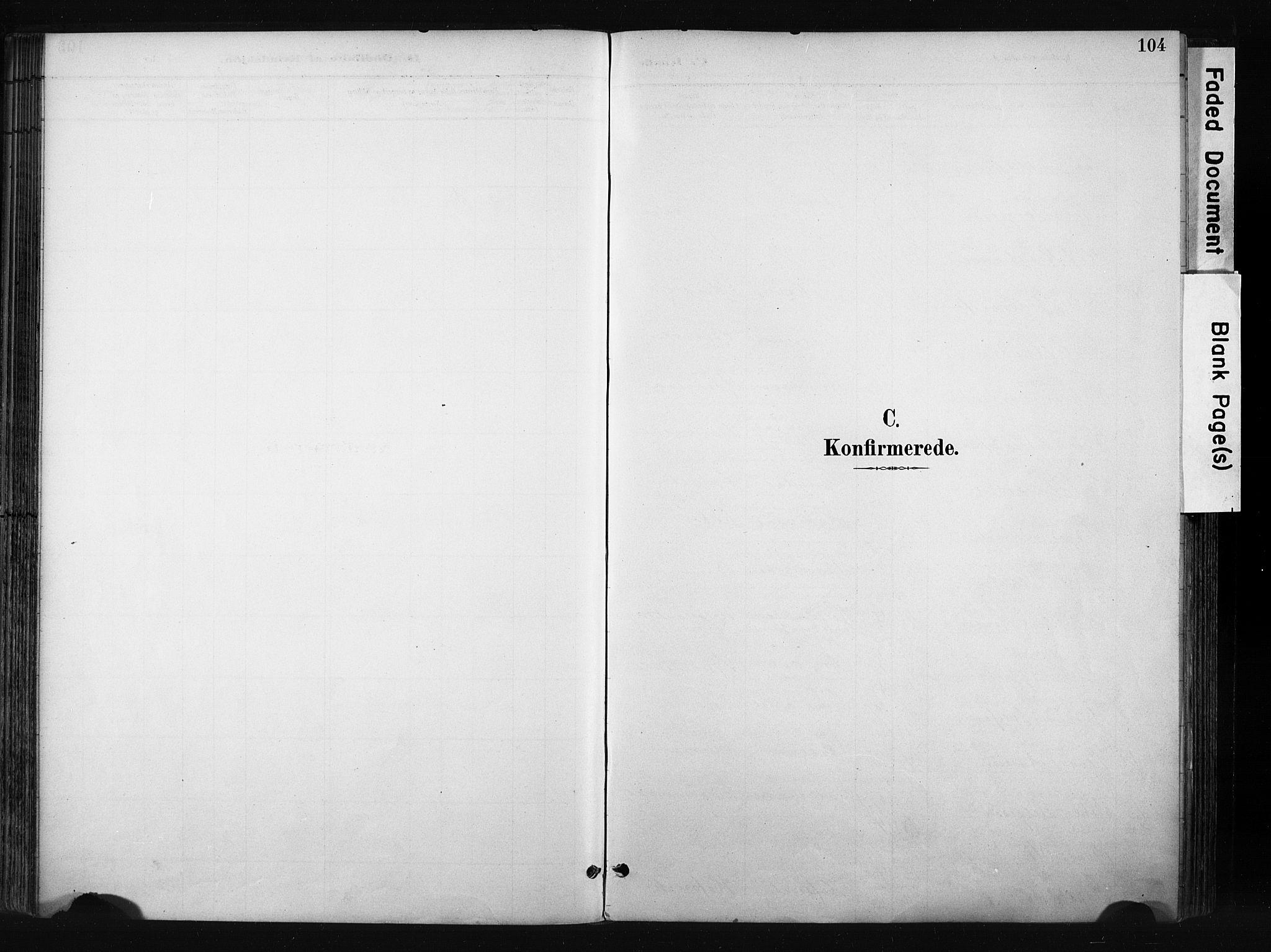 SAH, Gran prestekontor, Ministerialbok nr. 17, 1889-1897, s. 104