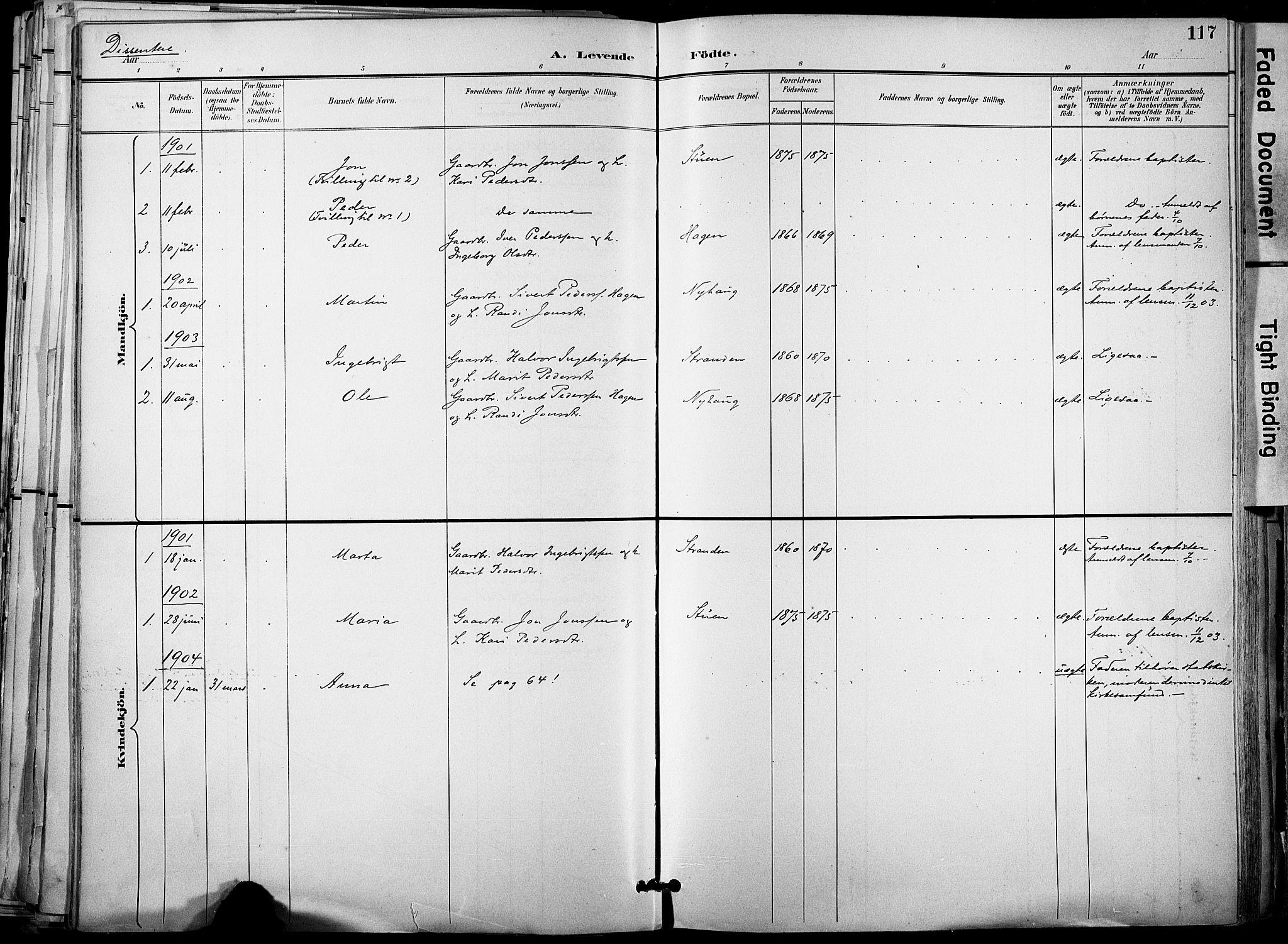 SAT, Ministerialprotokoller, klokkerbøker og fødselsregistre - Sør-Trøndelag, 678/L0902: Ministerialbok nr. 678A11, 1895-1911, s. 117