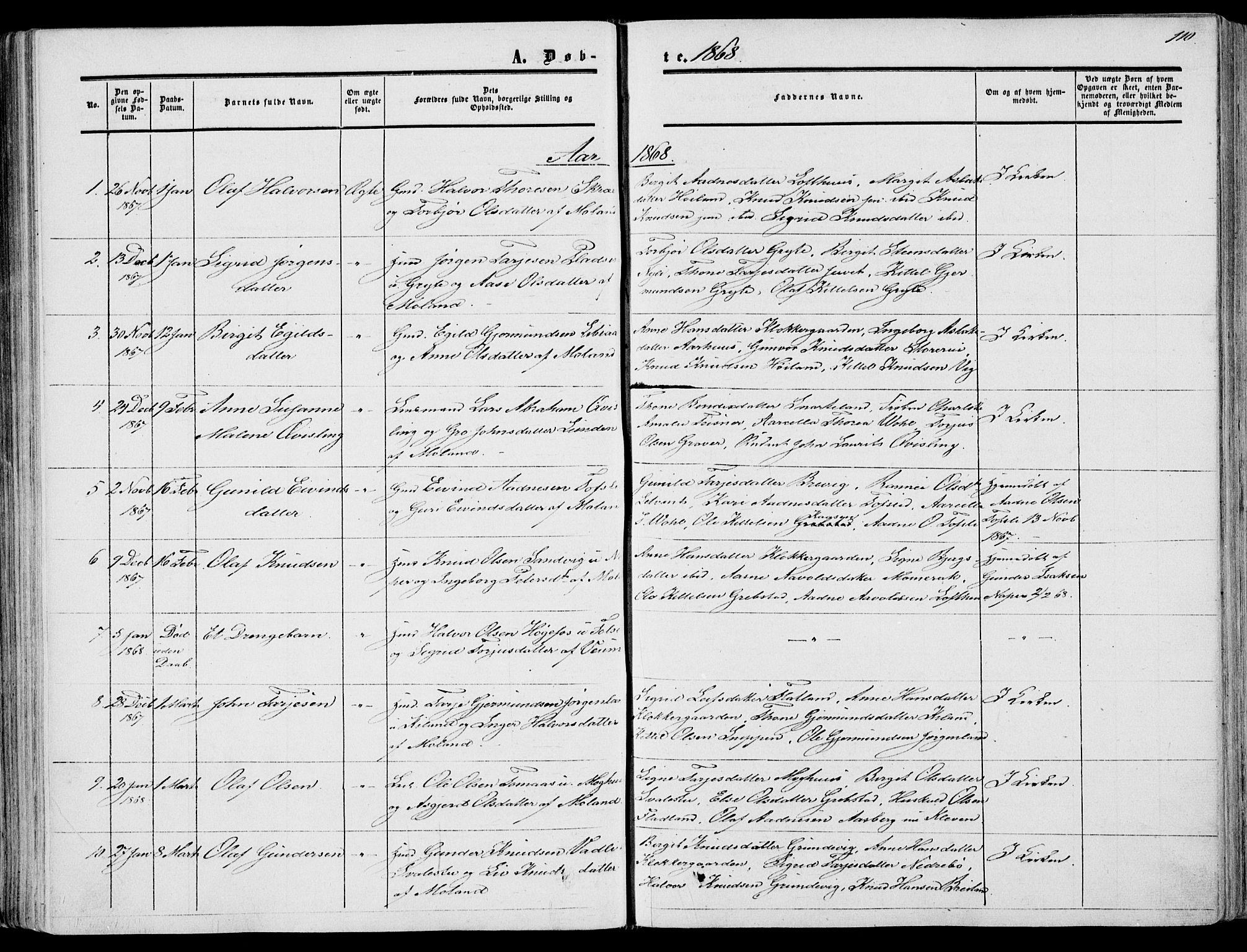 SAKO, Fyresdal kirkebøker, F/Fa/L0005: Ministerialbok nr. I 5, 1855-1871, s. 110