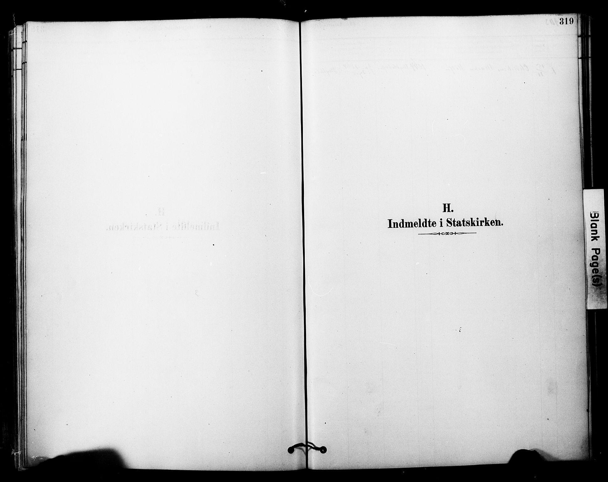 SATØ, Tranøy sokneprestkontor, I/Ia/Iaa/L0011kirke: Ministerialbok nr. 11, 1878-1904, s. 319