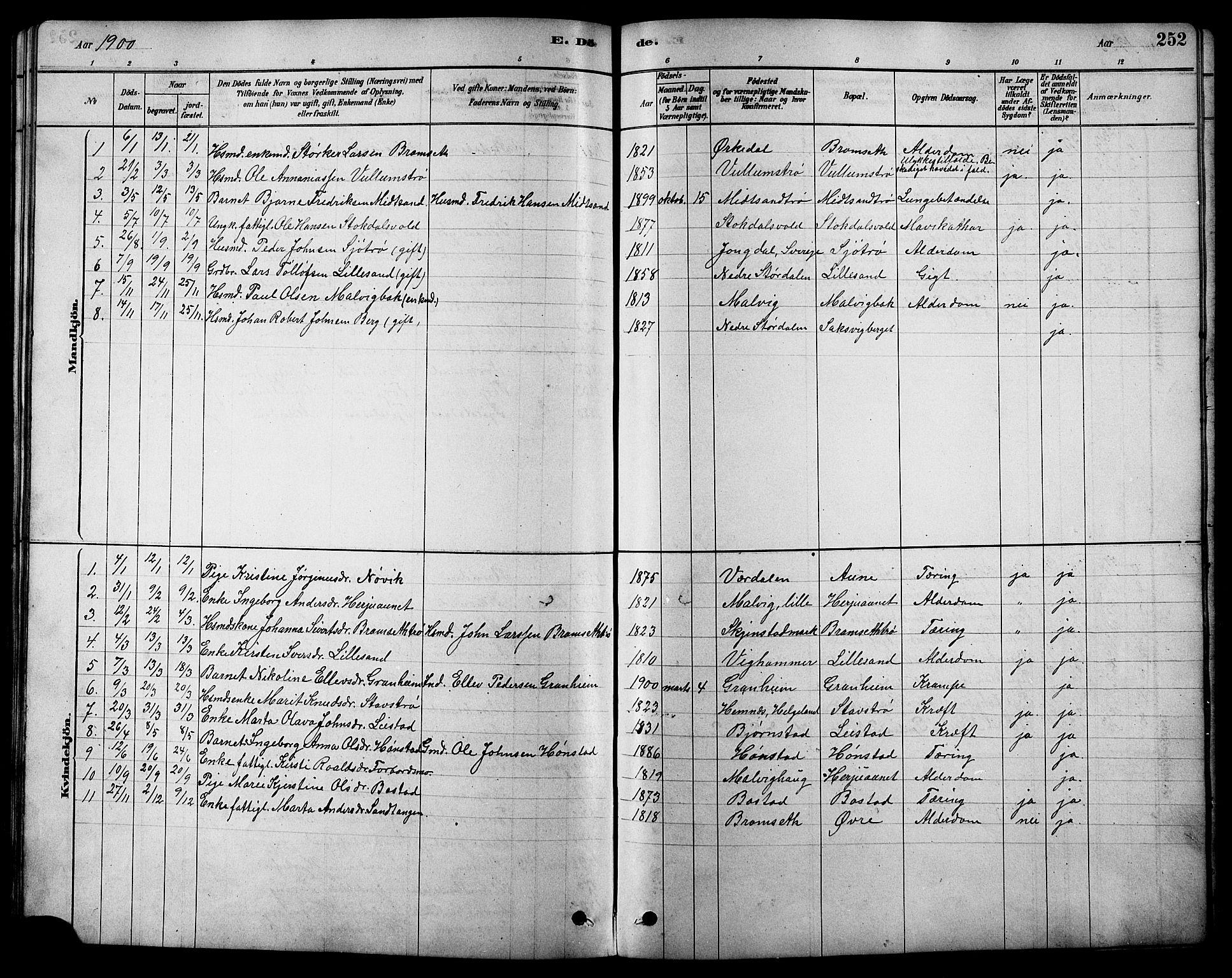 SAT, Ministerialprotokoller, klokkerbøker og fødselsregistre - Sør-Trøndelag, 616/L0423: Klokkerbok nr. 616C06, 1878-1903, s. 252