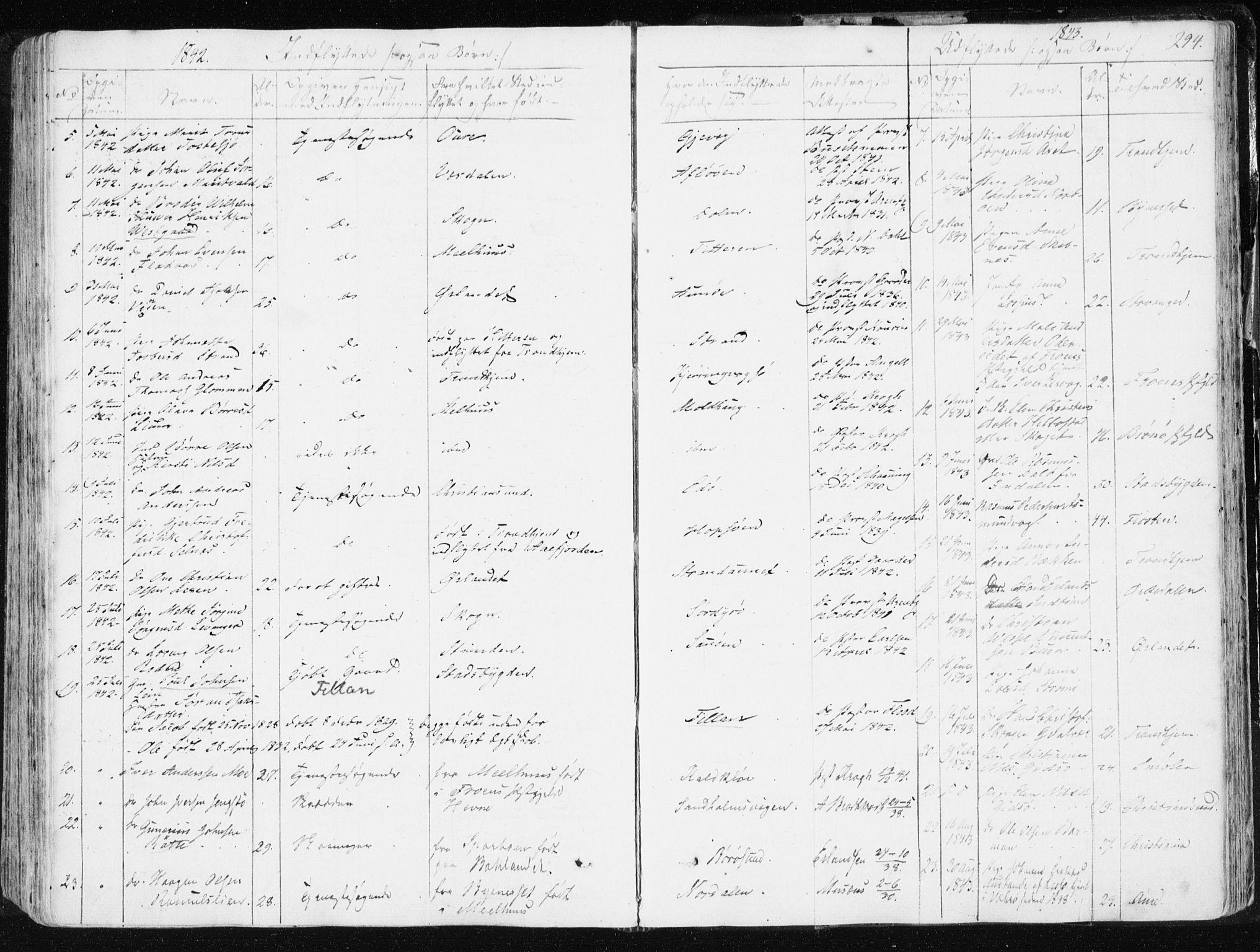SAT, Ministerialprotokoller, klokkerbøker og fødselsregistre - Sør-Trøndelag, 634/L0528: Ministerialbok nr. 634A04, 1827-1842, s. 294