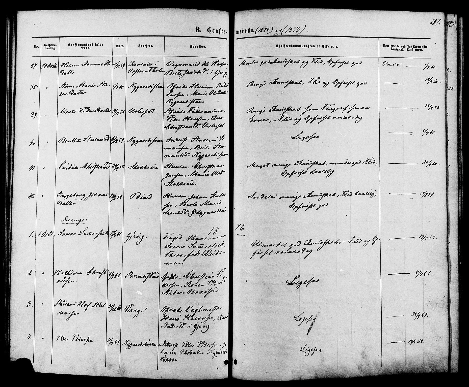 SAH, Vardal prestekontor, H/Ha/Haa/L0007: Ministerialbok nr. 7, 1867-1878, s. 217