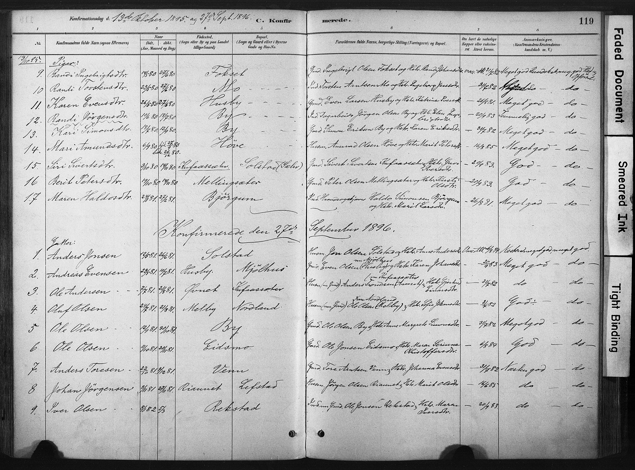 SAT, Ministerialprotokoller, klokkerbøker og fødselsregistre - Sør-Trøndelag, 667/L0795: Ministerialbok nr. 667A03, 1879-1907, s. 119