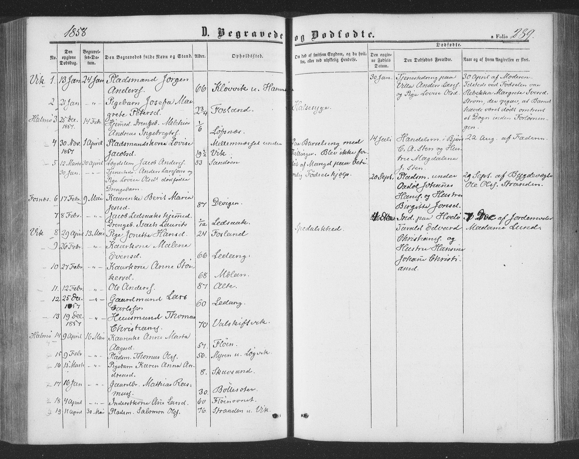 SAT, Ministerialprotokoller, klokkerbøker og fødselsregistre - Nord-Trøndelag, 773/L0615: Ministerialbok nr. 773A06, 1857-1870, s. 289