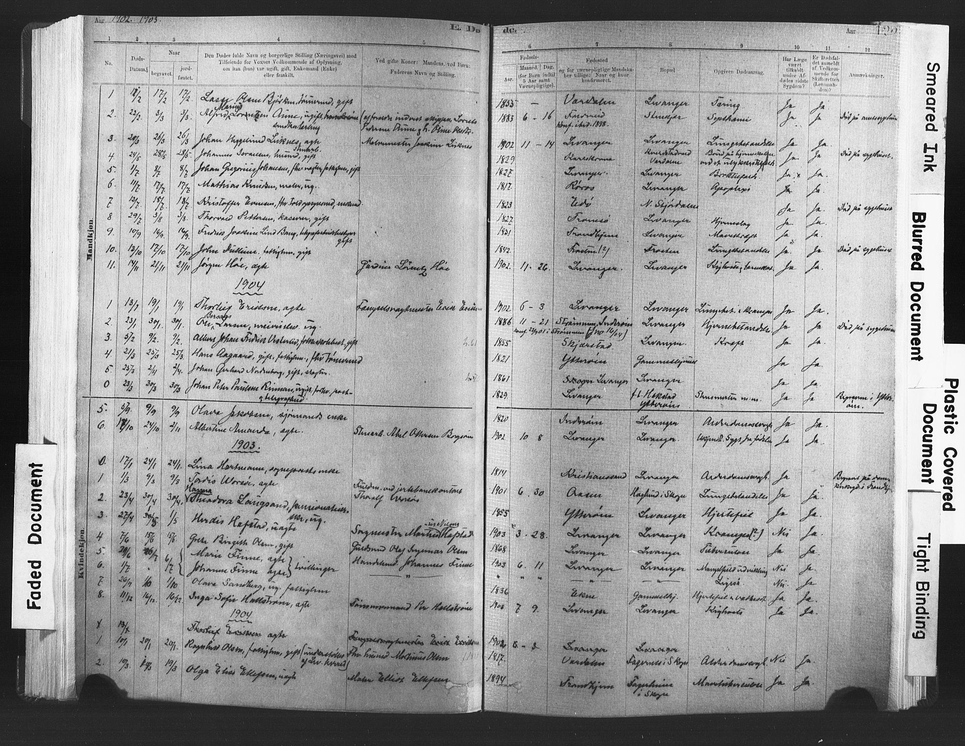 SAT, Ministerialprotokoller, klokkerbøker og fødselsregistre - Nord-Trøndelag, 720/L0189: Ministerialbok nr. 720A05, 1880-1911, s. 125