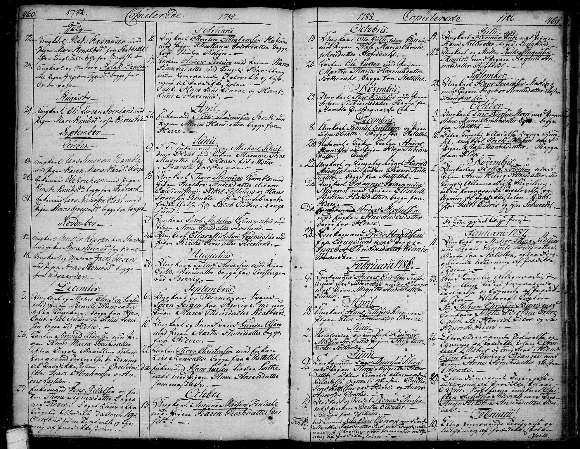 SAKO, Bamble kirkebøker, F/Fa/L0002: Ministerialbok nr. I 2, 1775-1814, s. 460-461