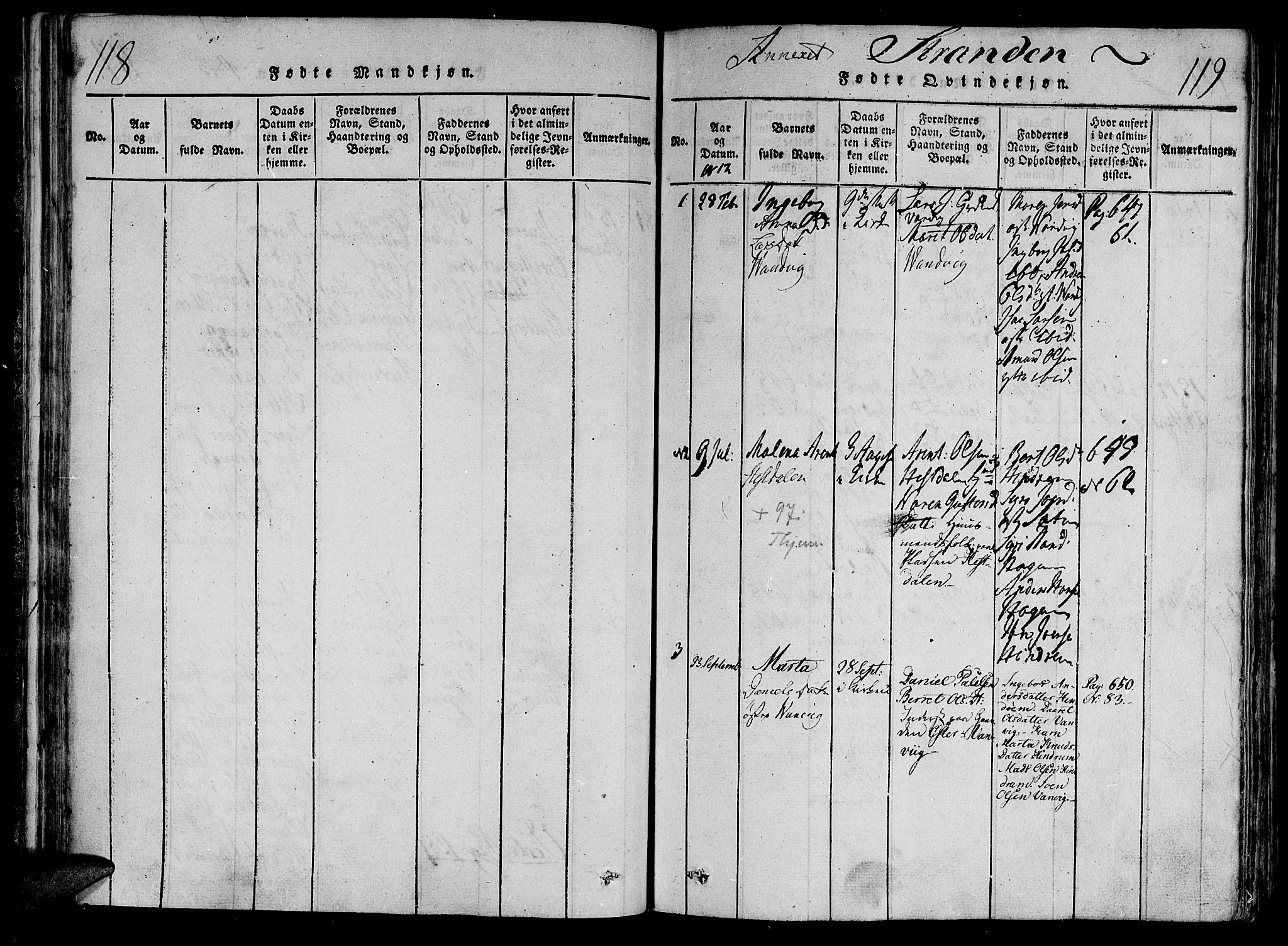 SAT, Ministerialprotokoller, klokkerbøker og fødselsregistre - Nord-Trøndelag, 701/L0005: Ministerialbok nr. 701A05 /2, 1816-1825, s. 118-119