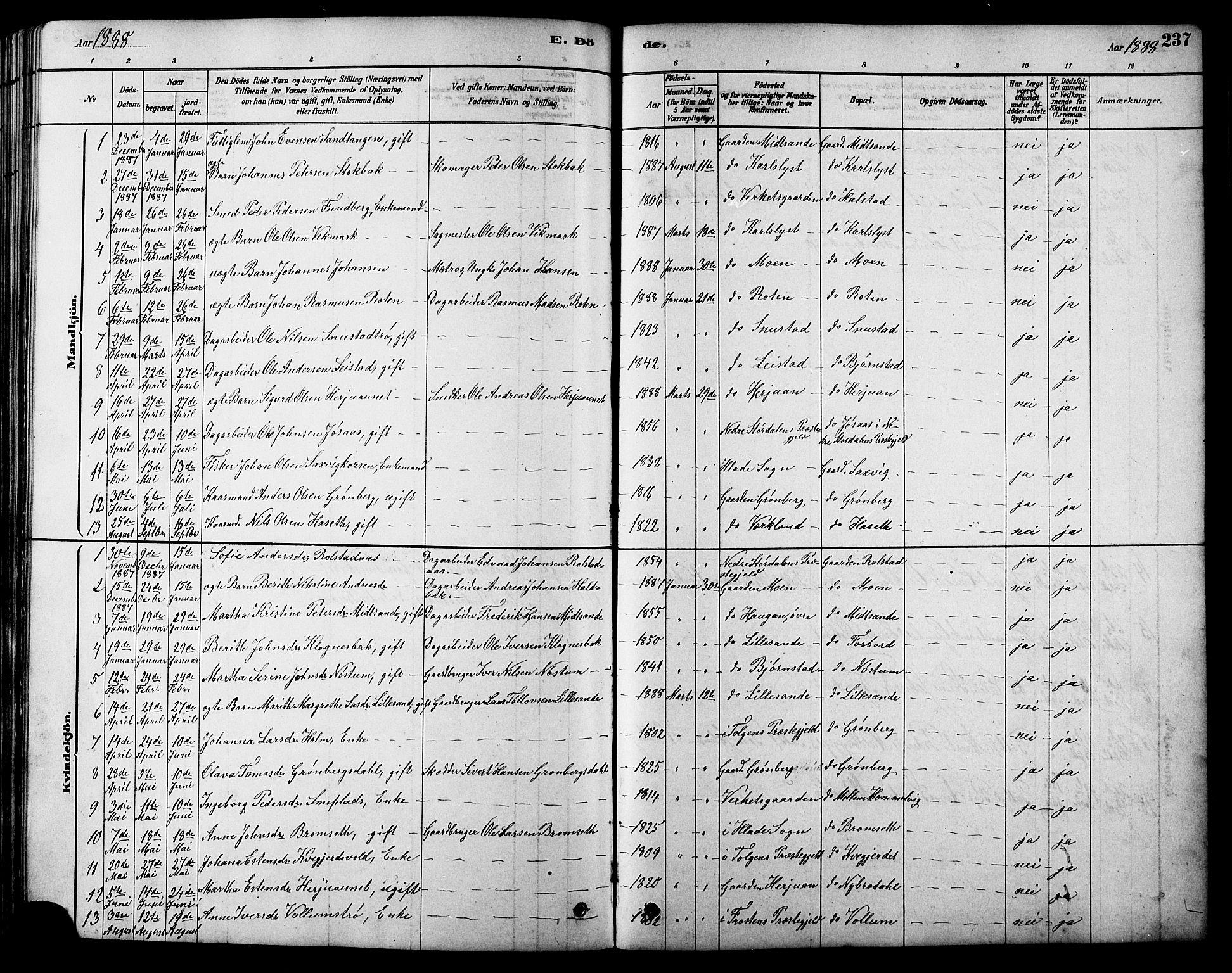 SAT, Ministerialprotokoller, klokkerbøker og fødselsregistre - Sør-Trøndelag, 616/L0423: Klokkerbok nr. 616C06, 1878-1903, s. 237