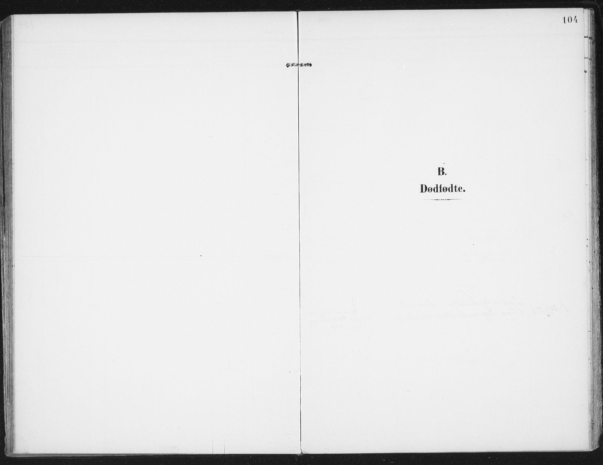SAT, Ministerialprotokoller, klokkerbøker og fødselsregistre - Nordland, 892/L1321: Ministerialbok nr. 892A02, 1902-1918, s. 104