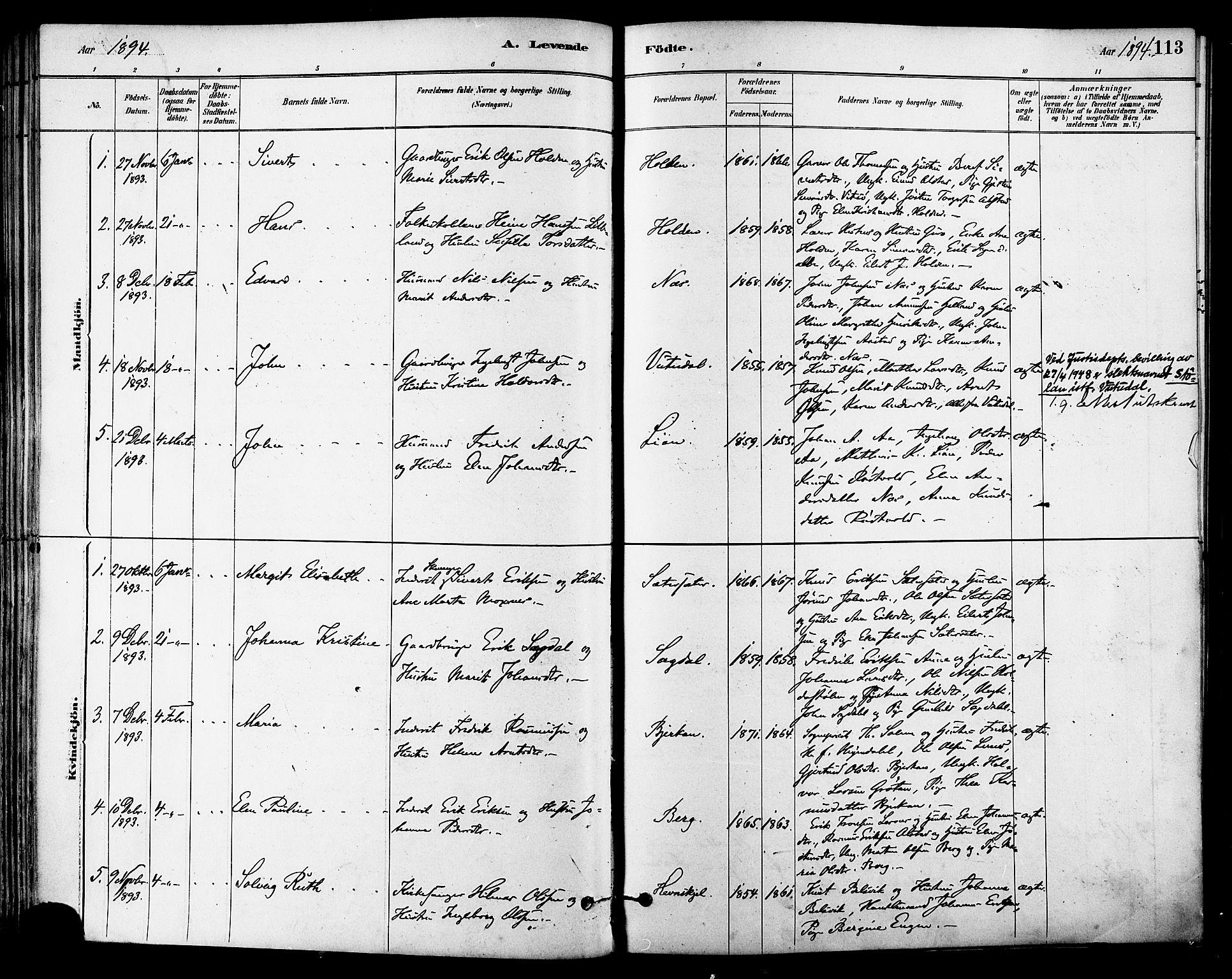 SAT, Ministerialprotokoller, klokkerbøker og fødselsregistre - Sør-Trøndelag, 630/L0496: Ministerialbok nr. 630A09, 1879-1895, s. 113
