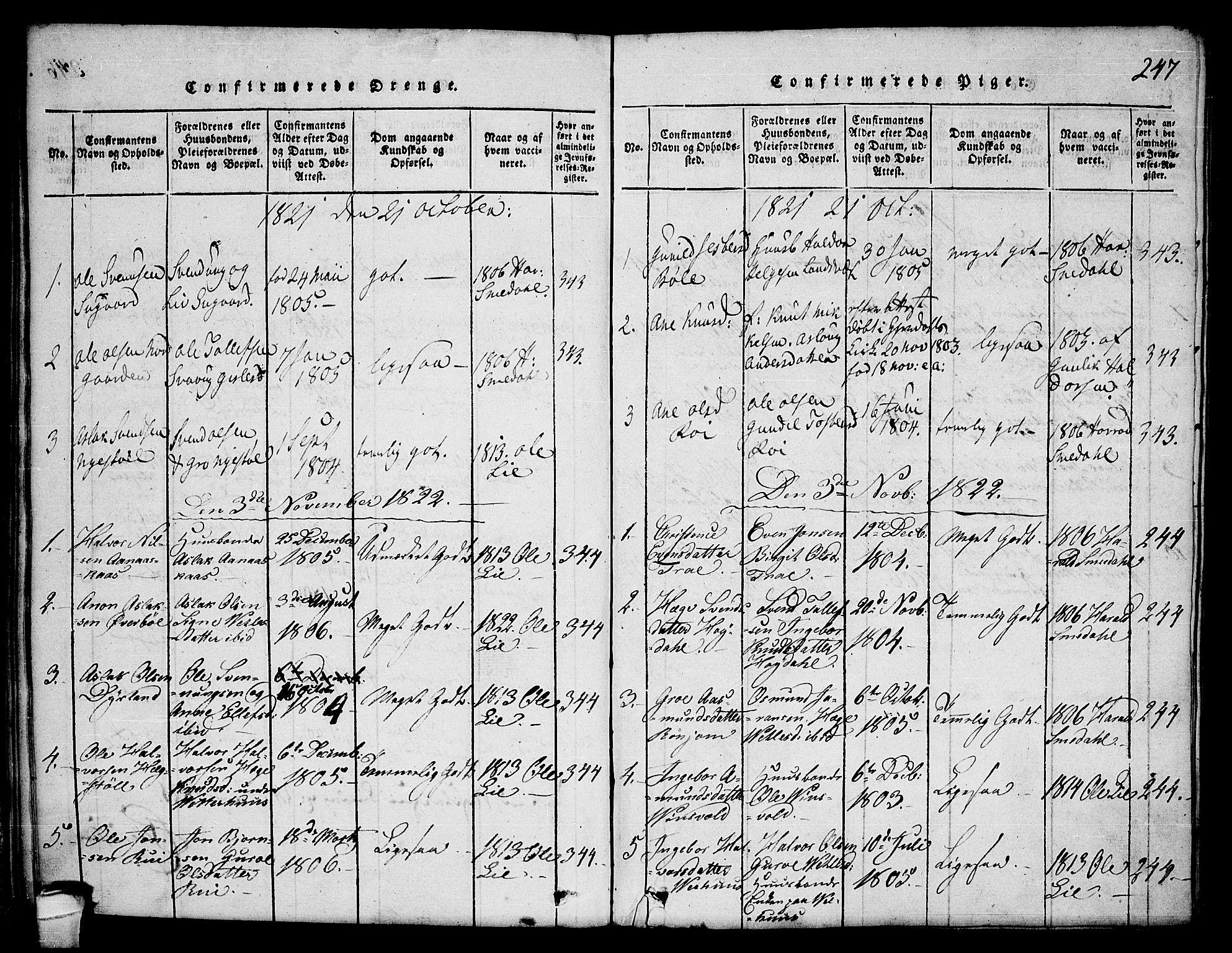 SAKO, Seljord kirkebøker, F/Fc/L0001: Ministerialbok nr. III 1, 1815-1831, s. 247