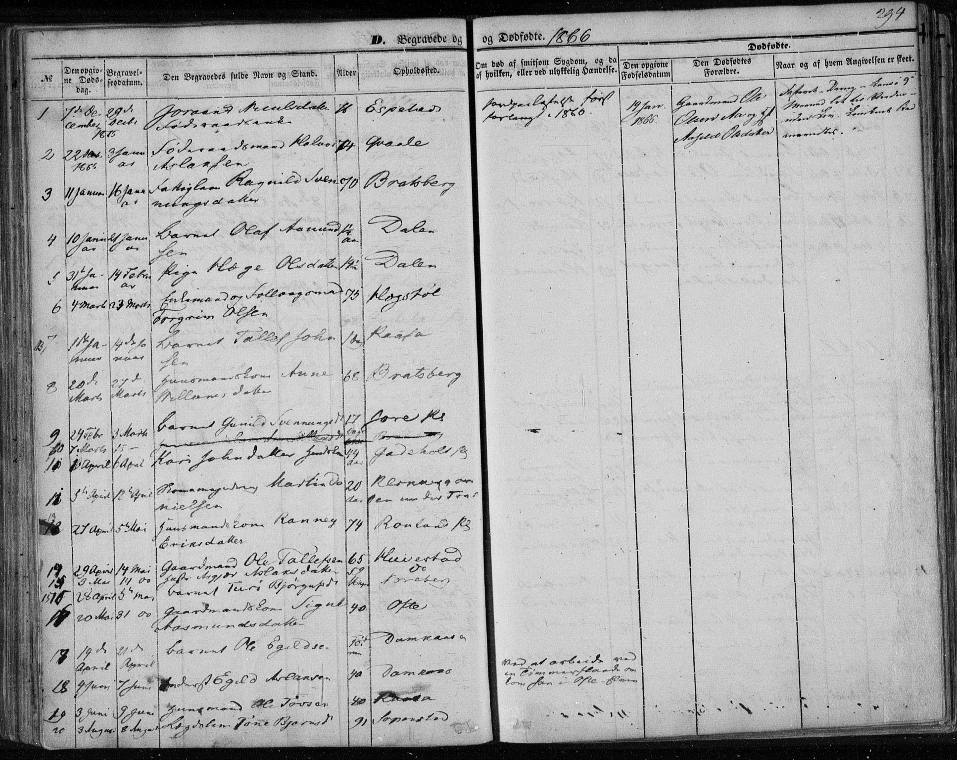 SAKO, Lårdal kirkebøker, F/Fa/L0006: Ministerialbok nr. I 6, 1861-1886, s. 294