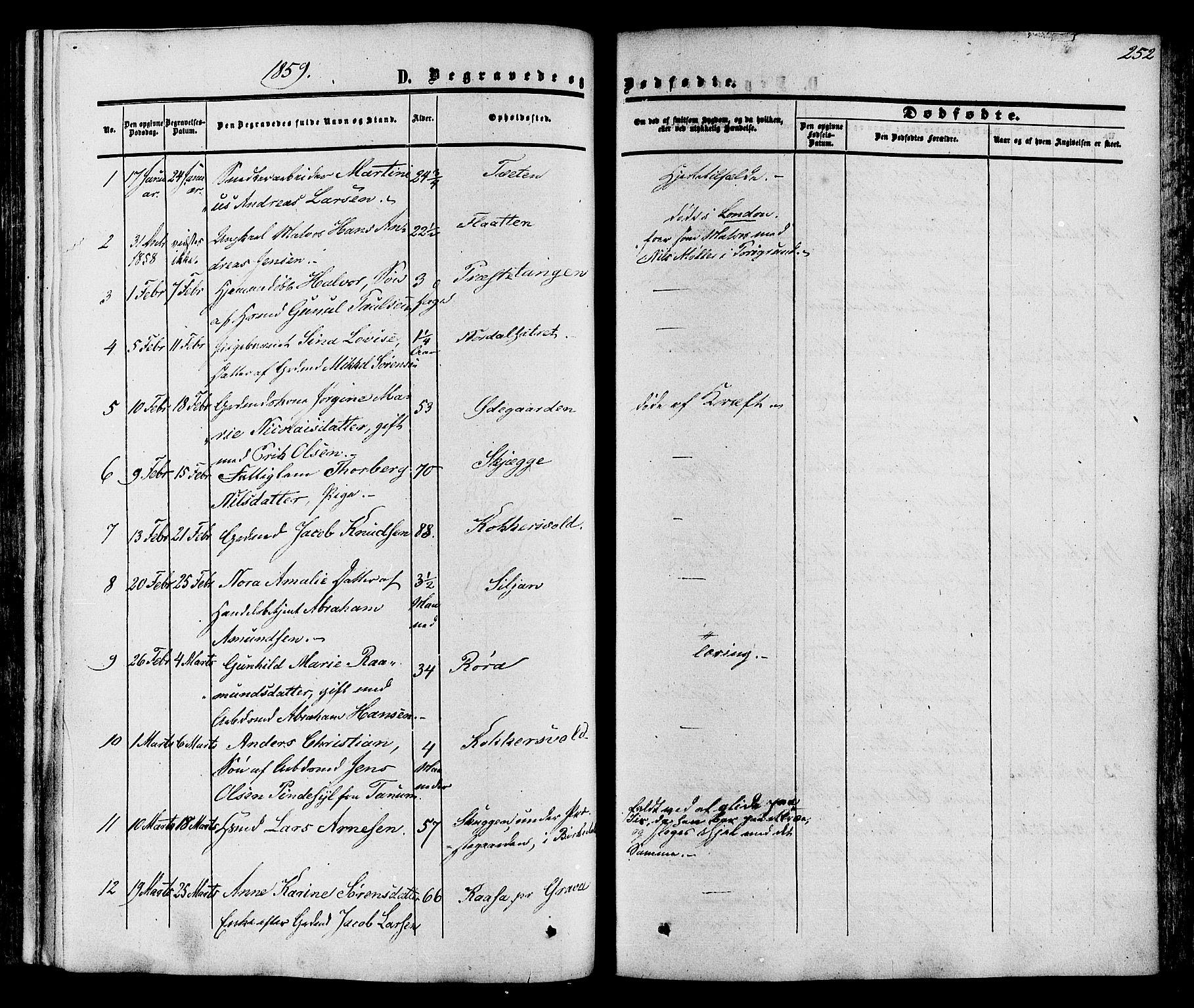 SAKO, Eidanger kirkebøker, F/Fa/L0010: Ministerialbok nr. 10, 1859-1874, s. 252