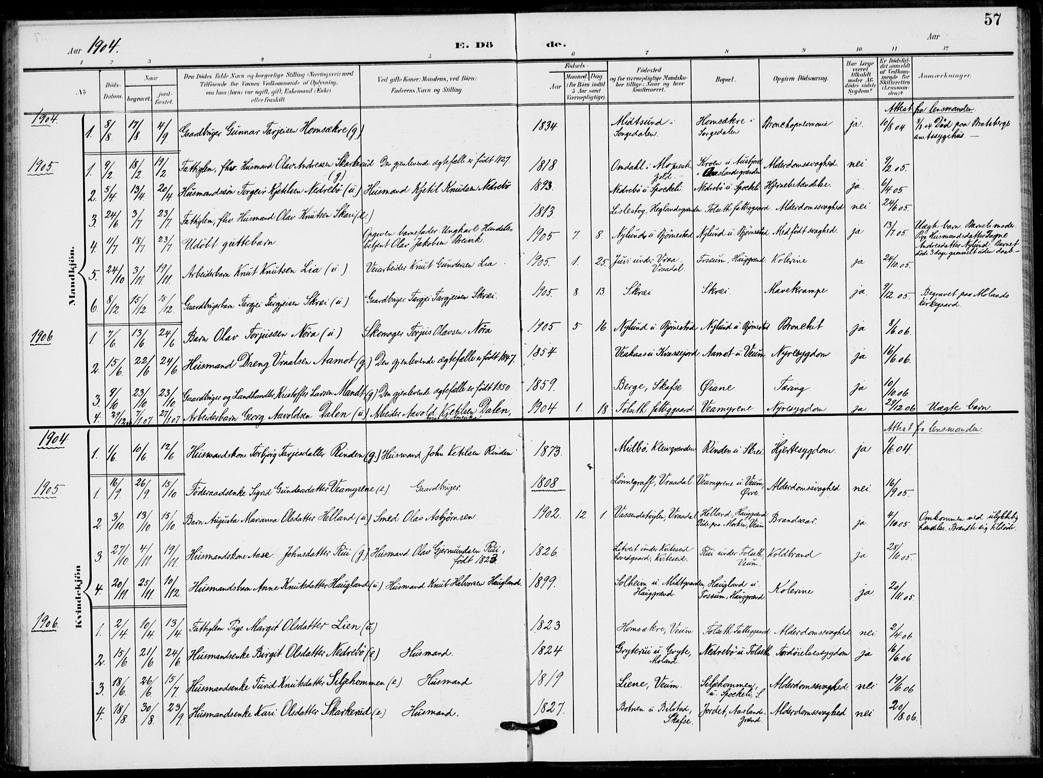 SAKO, Fyresdal kirkebøker, F/Fb/L0004: Ministerialbok nr. II 4, 1903-1920, s. 57
