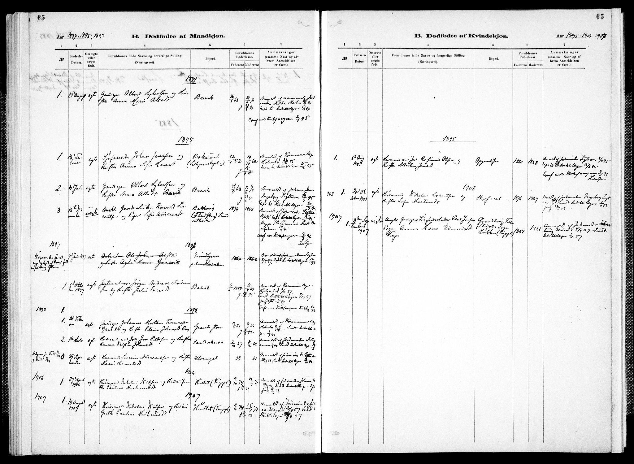 SAT, Ministerialprotokoller, klokkerbøker og fødselsregistre - Nord-Trøndelag, 733/L0325: Ministerialbok nr. 733A04, 1884-1908, s. 65