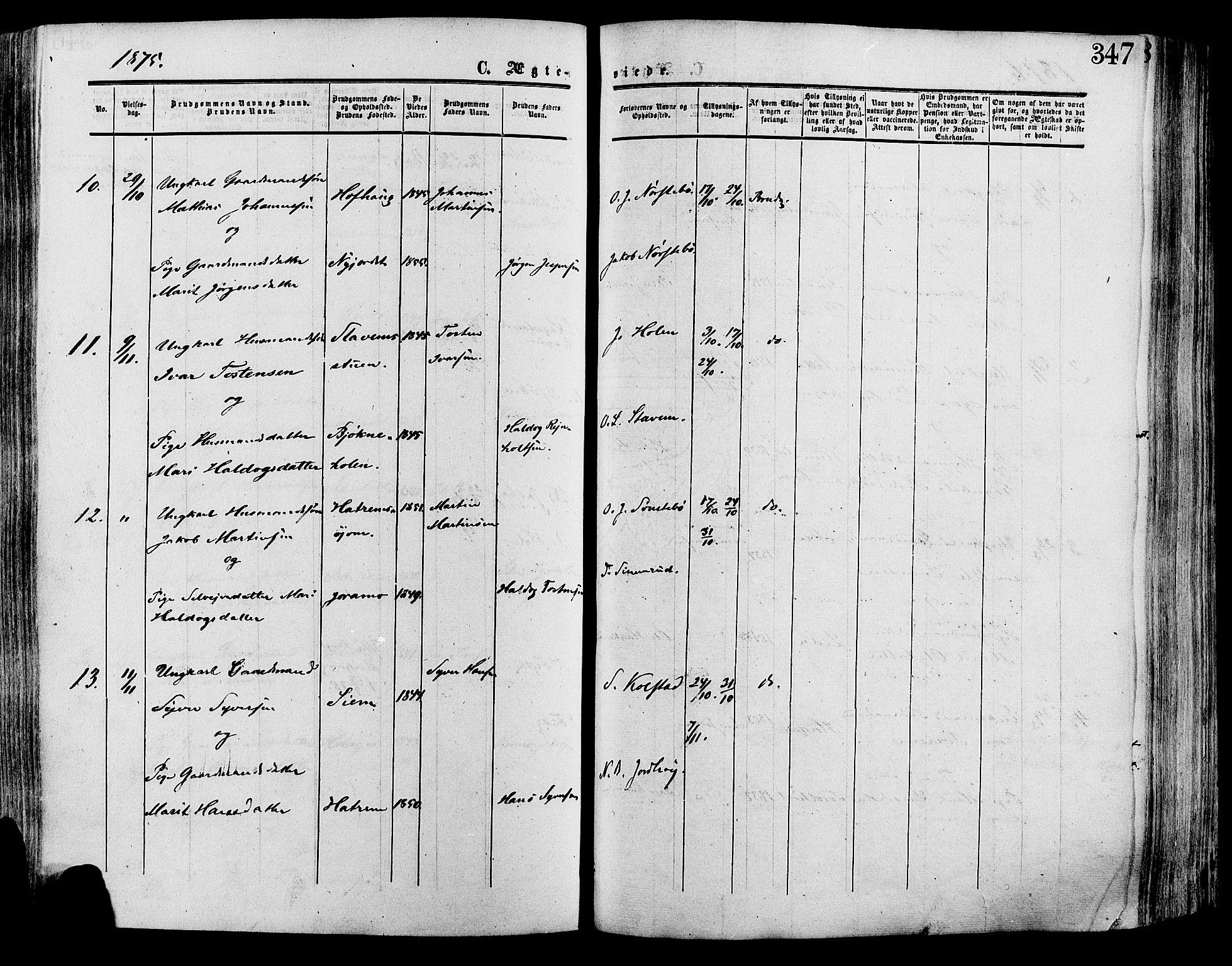 SAH, Lesja prestekontor, Ministerialbok nr. 8, 1854-1880, s. 347