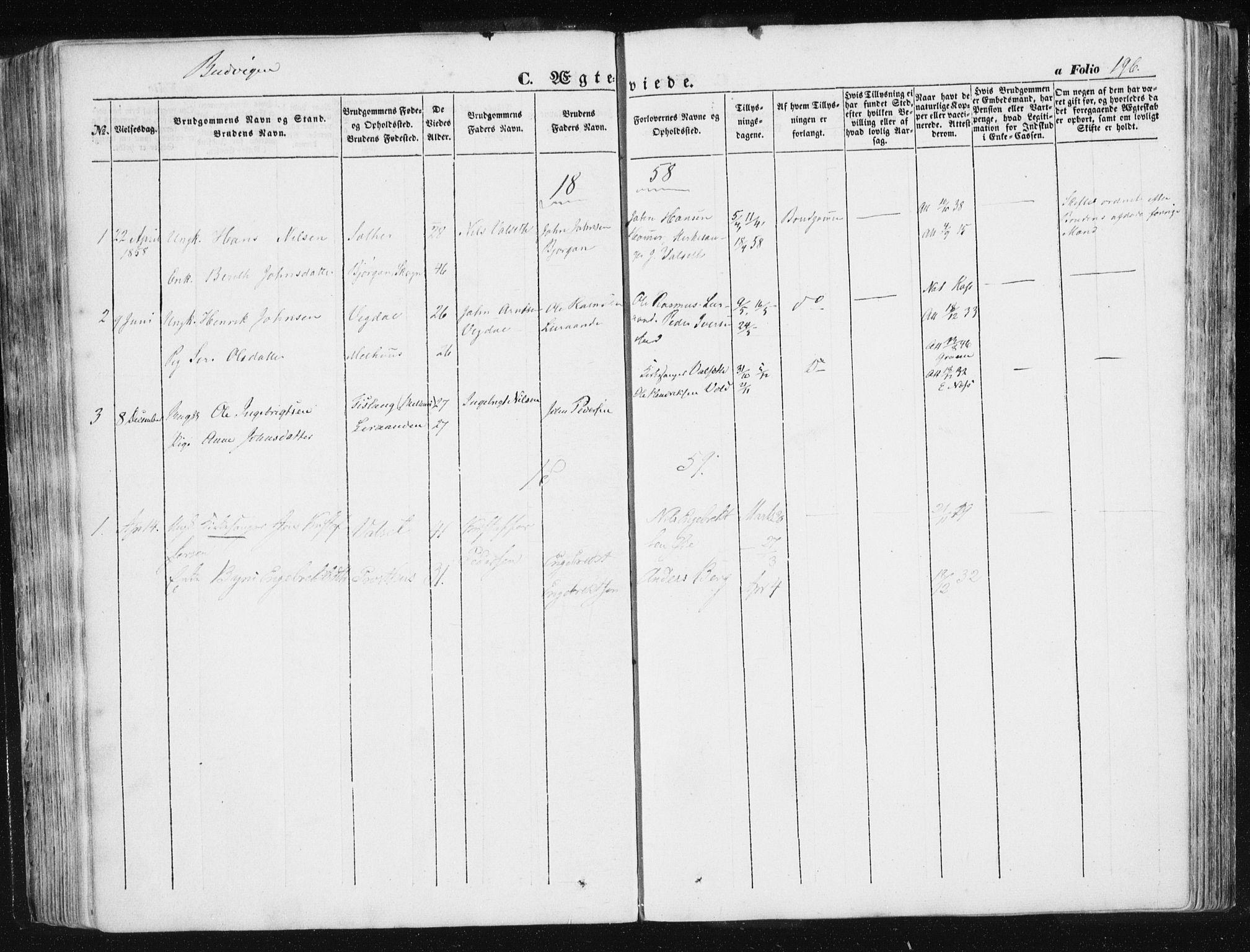 SAT, Ministerialprotokoller, klokkerbøker og fødselsregistre - Sør-Trøndelag, 612/L0376: Ministerialbok nr. 612A08, 1846-1859, s. 196