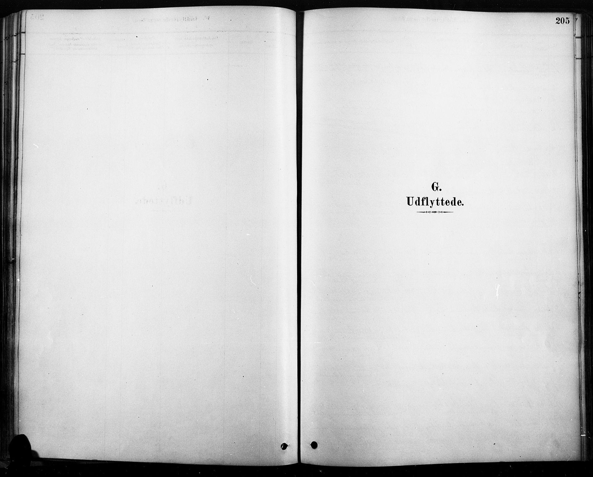 SAH, Rendalen prestekontor, H/Ha/Haa/L0009: Ministerialbok nr. 9, 1878-1901, s. 205