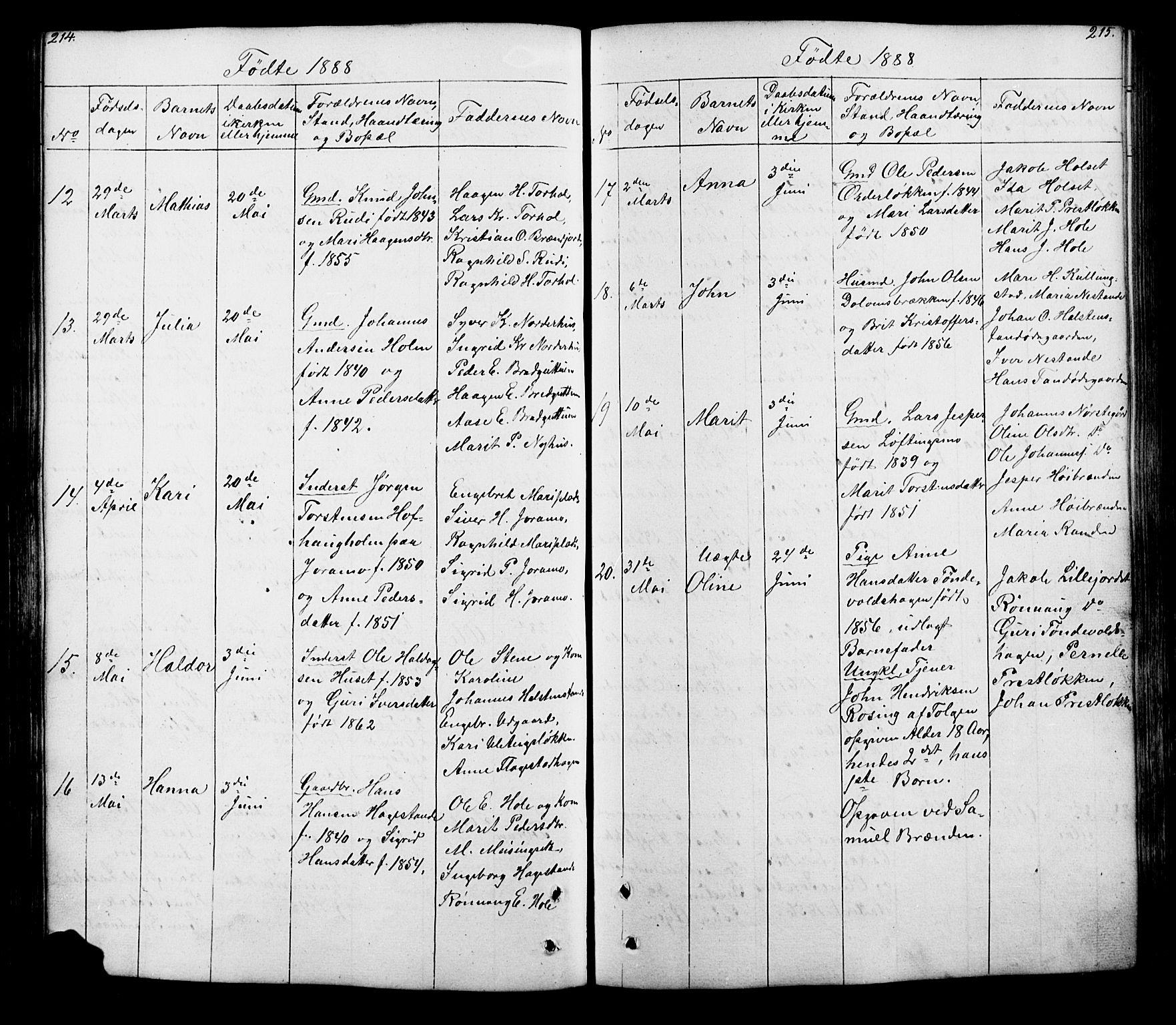 SAH, Lesja prestekontor, Klokkerbok nr. 5, 1850-1894, s. 214-215