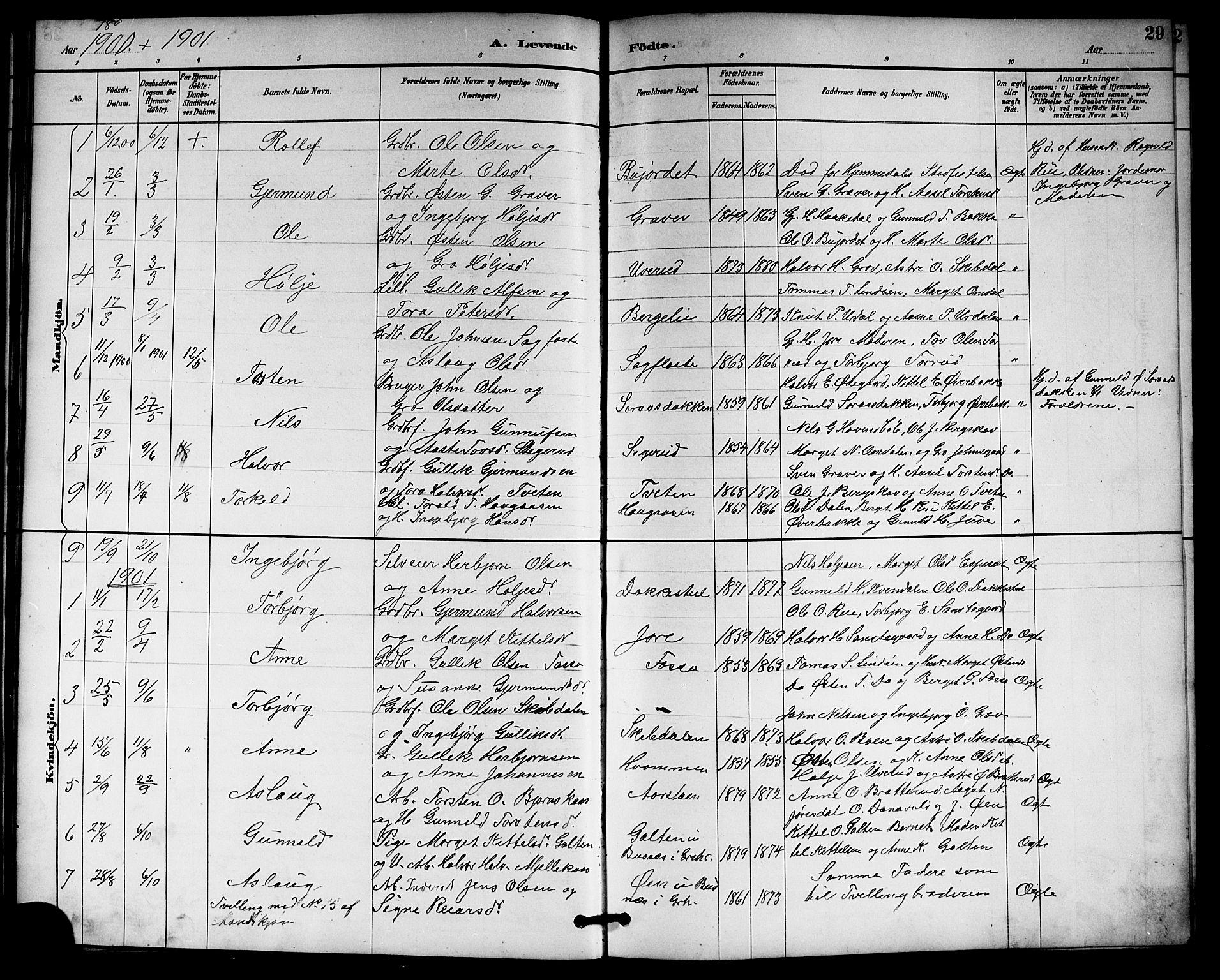 SAKO, Gransherad kirkebøker, G/Gb/L0003: Klokkerbok nr. II 3, 1887-1921, s. 29