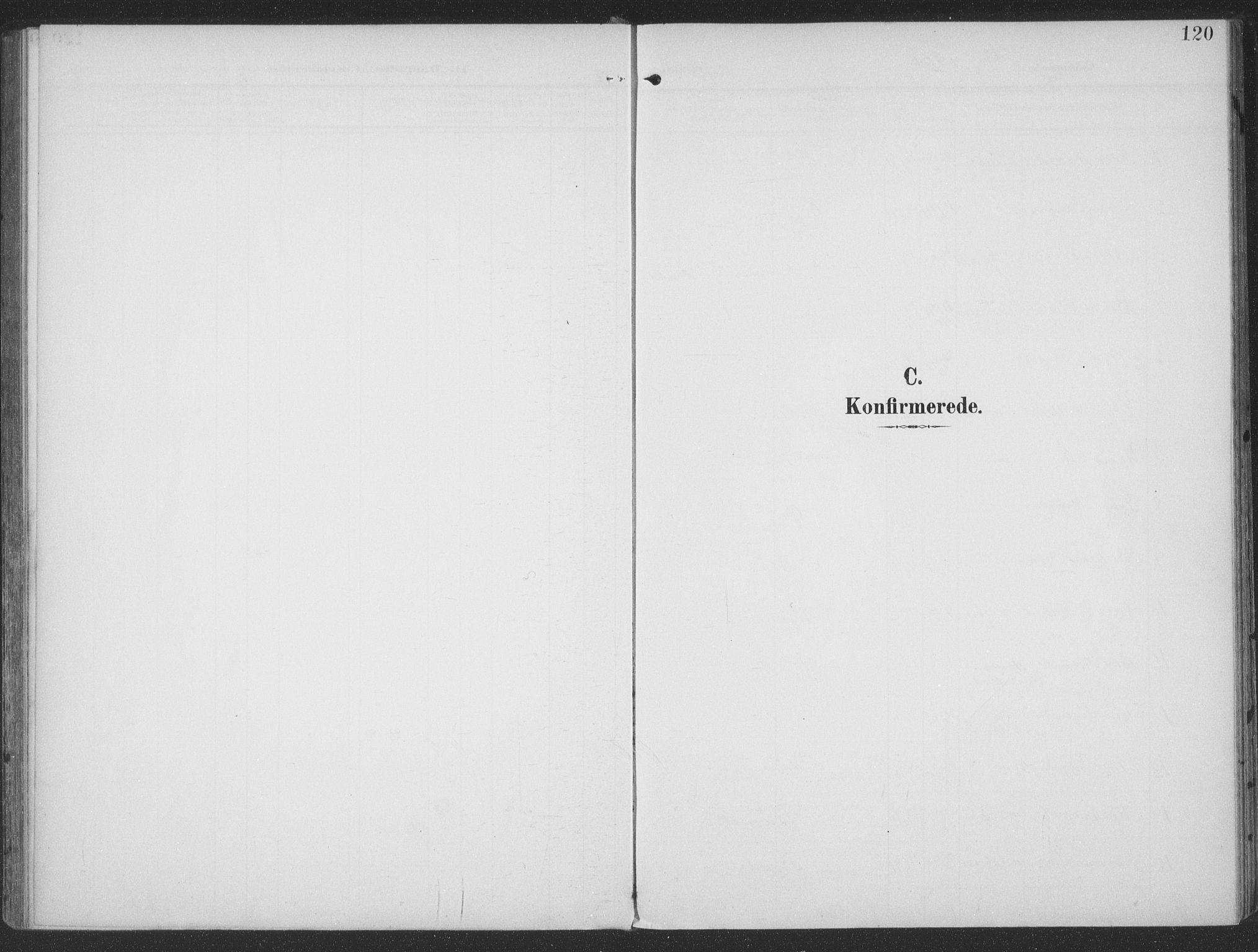 SAT, Ministerialprotokoller, klokkerbøker og fødselsregistre - Møre og Romsdal, 513/L0178: Ministerialbok nr. 513A05, 1906-1919, s. 120