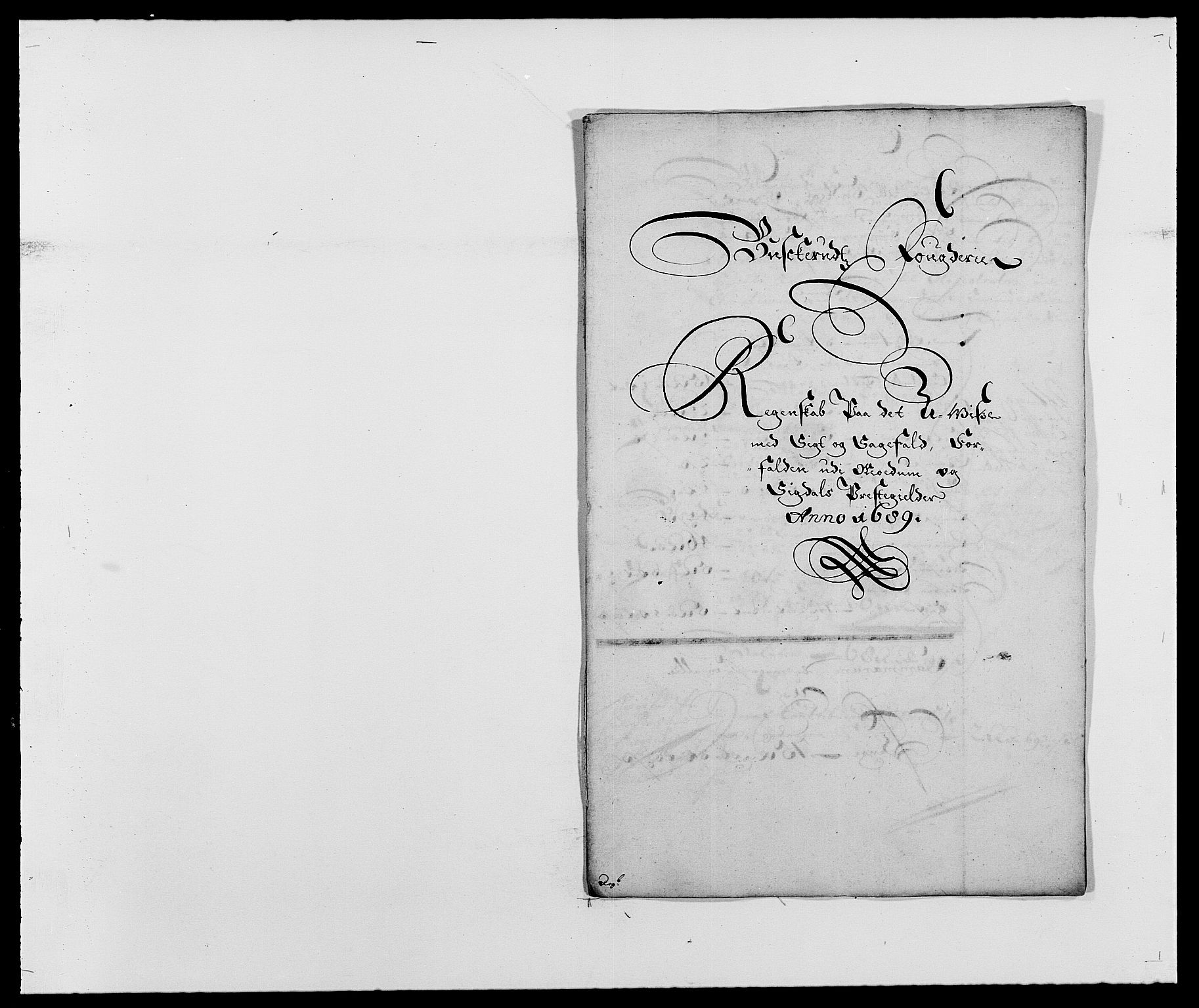 RA, Rentekammeret inntil 1814, Reviderte regnskaper, Fogderegnskap, R25/L1680: Fogderegnskap Buskerud, 1689-1690, s. 19