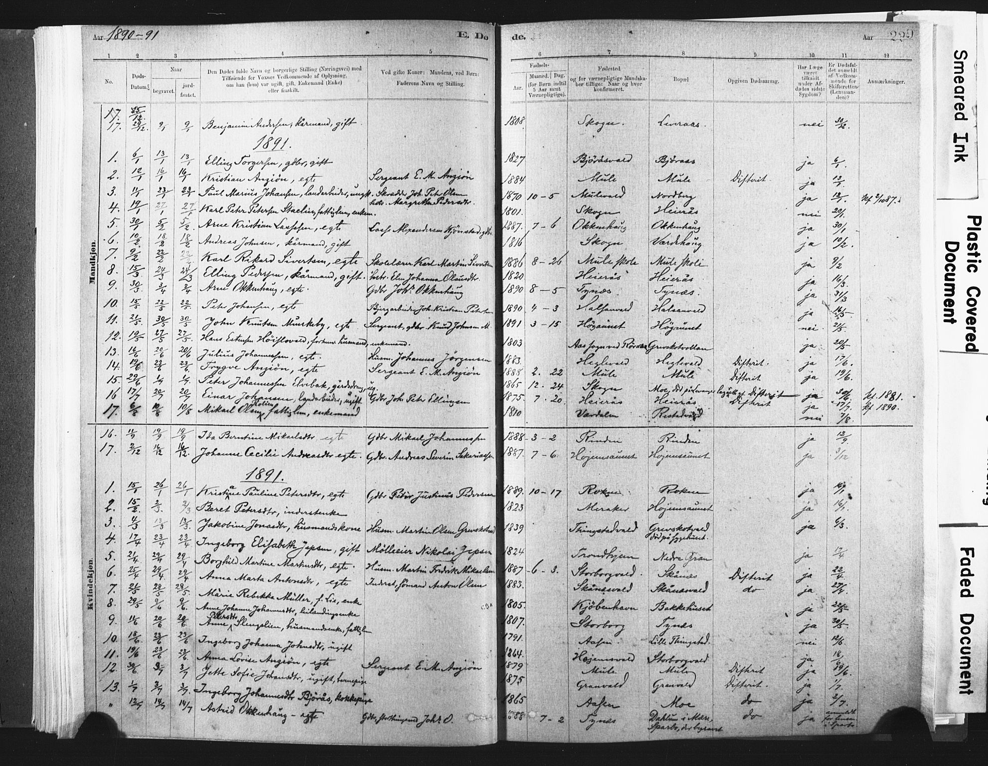 SAT, Ministerialprotokoller, klokkerbøker og fødselsregistre - Nord-Trøndelag, 721/L0207: Ministerialbok nr. 721A02, 1880-1911, s. 229