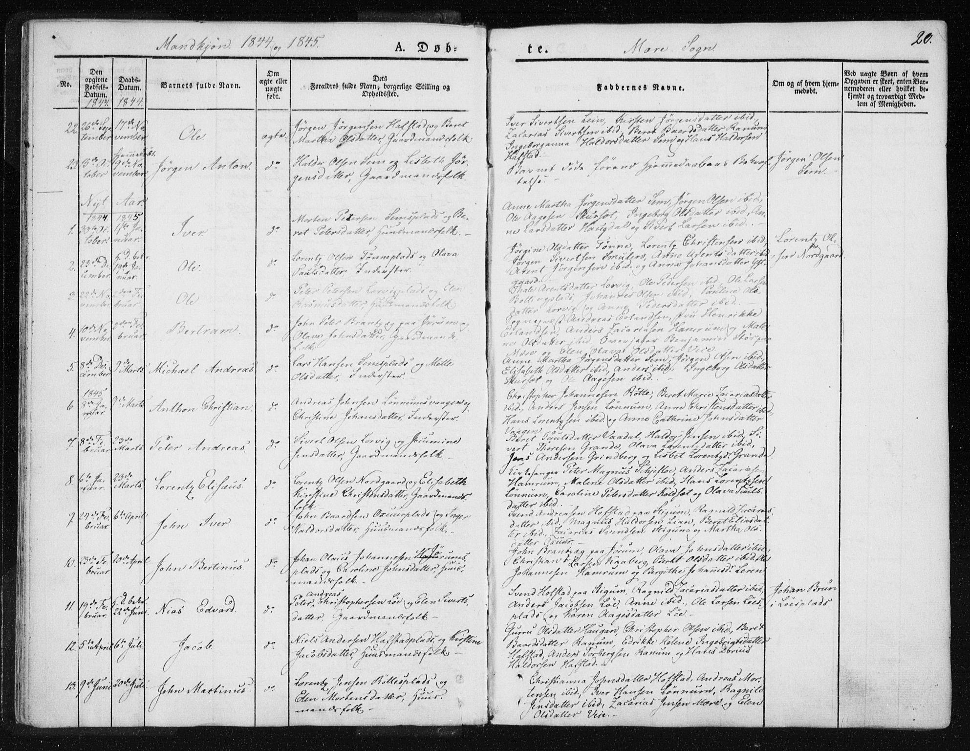 SAT, Ministerialprotokoller, klokkerbøker og fødselsregistre - Nord-Trøndelag, 735/L0339: Ministerialbok nr. 735A06 /1, 1836-1848, s. 20