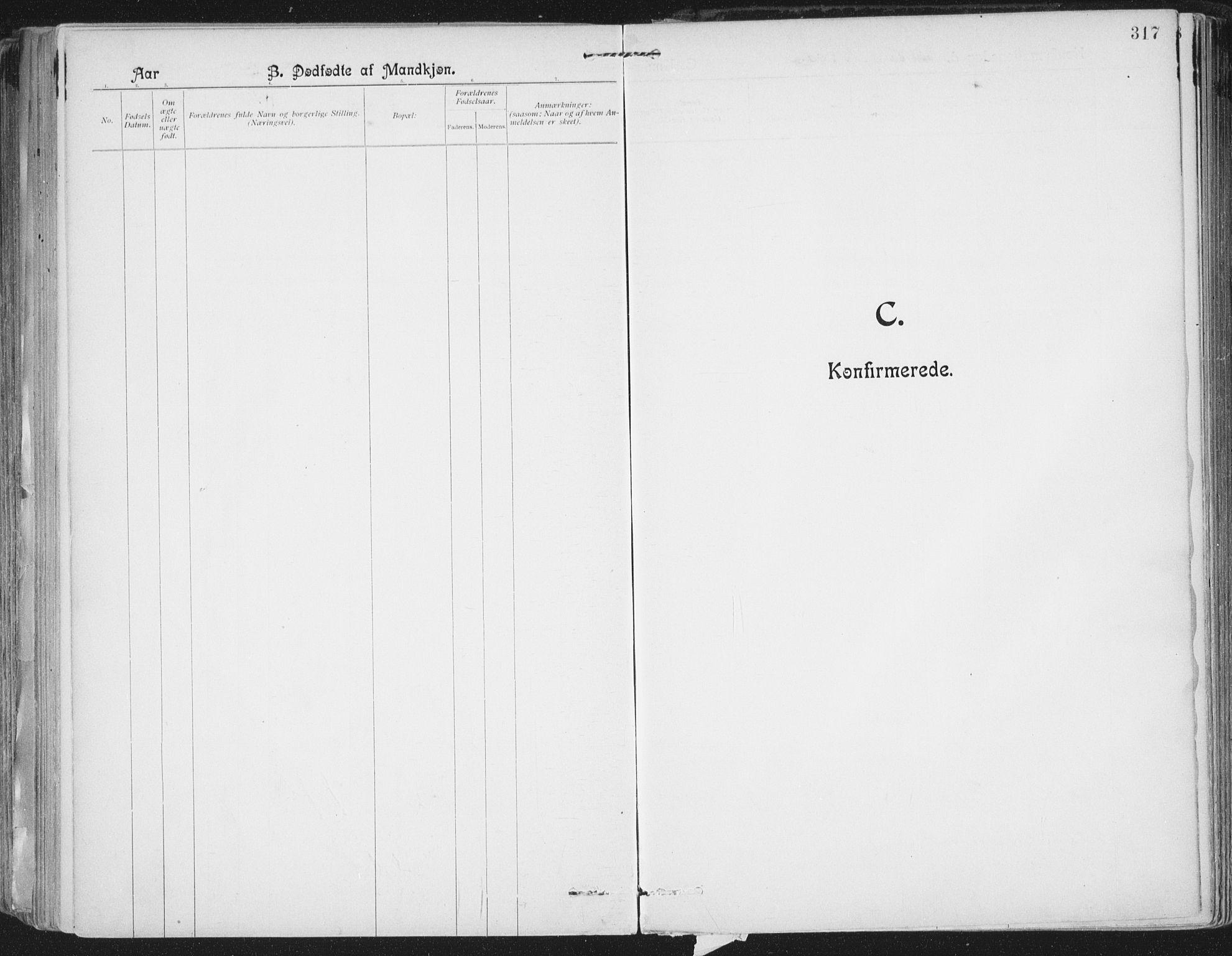 SAT, Ministerialprotokoller, klokkerbøker og fødselsregistre - Nordland, 801/L0011: Ministerialbok nr. 801A11, 1900-1916, s. 317