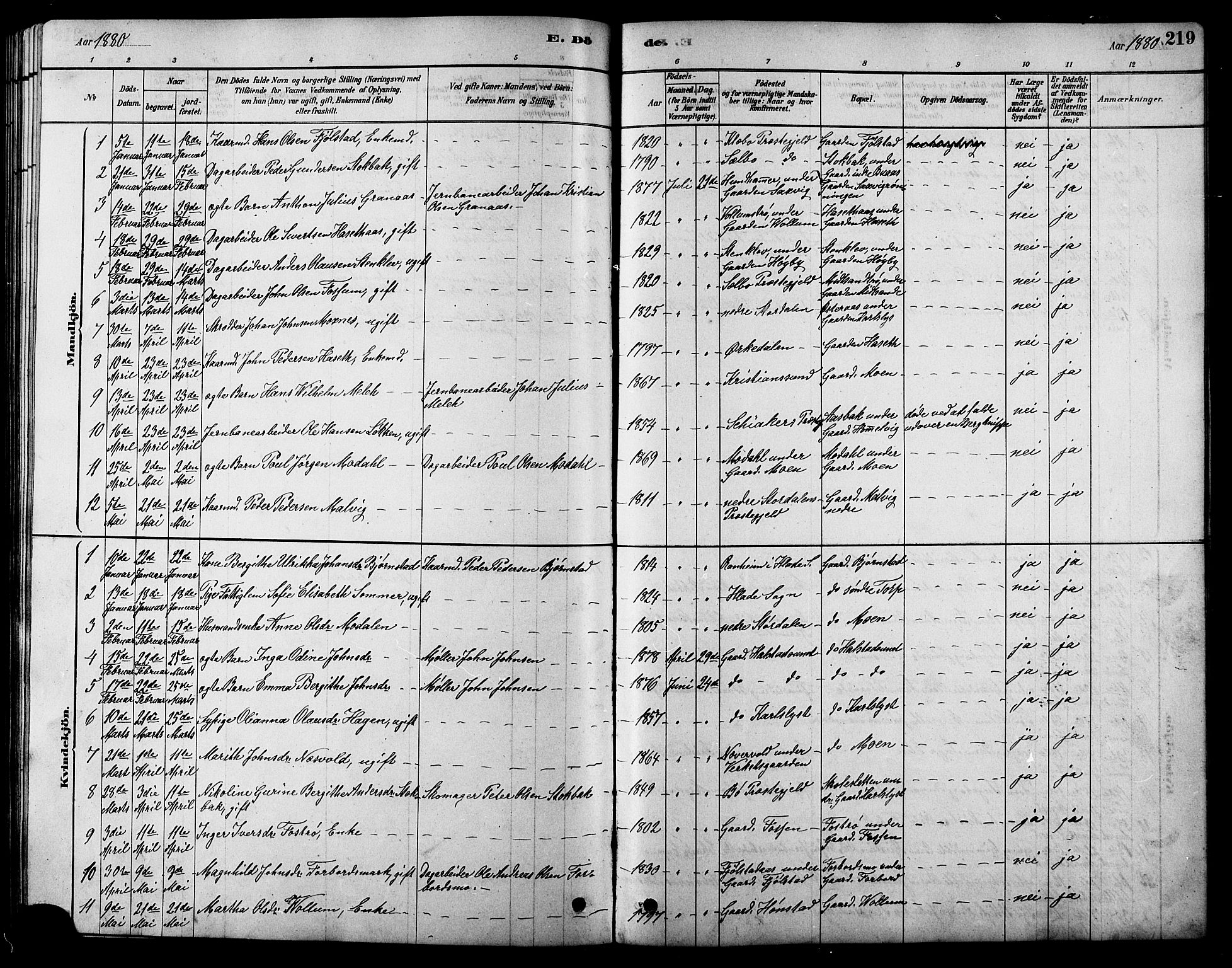 SAT, Ministerialprotokoller, klokkerbøker og fødselsregistre - Sør-Trøndelag, 616/L0423: Klokkerbok nr. 616C06, 1878-1903, s. 219