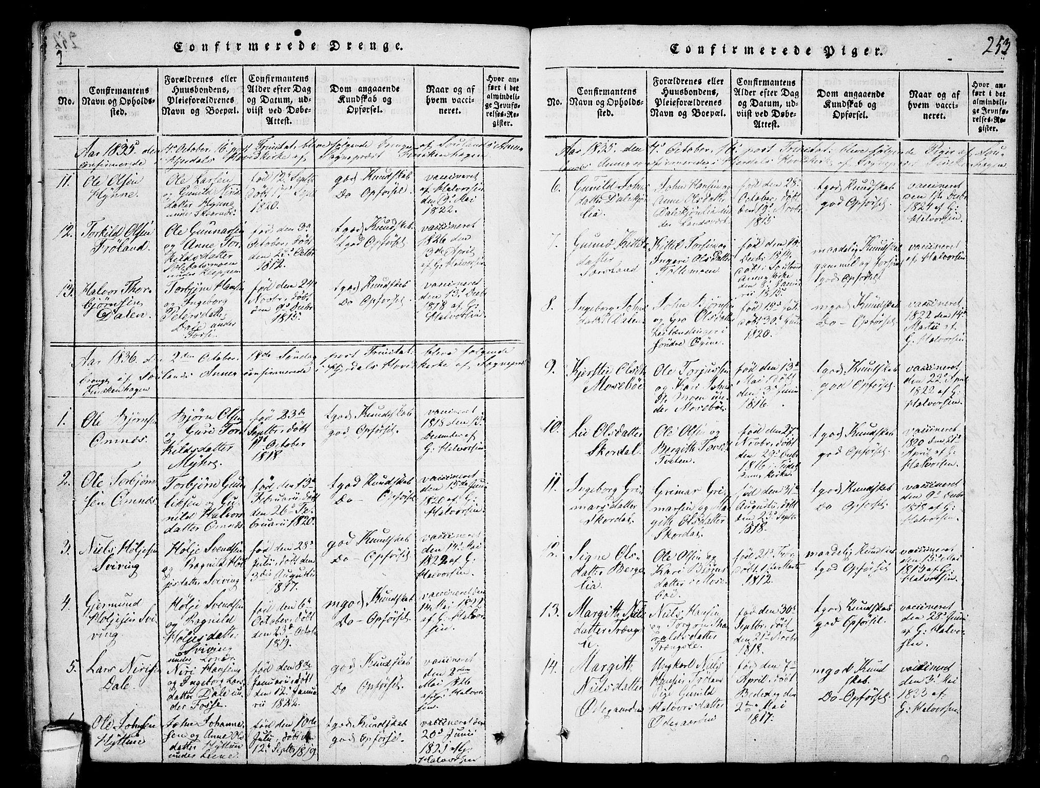 SAKO, Hjartdal kirkebøker, F/Fb/L0001: Ministerialbok nr. II 1, 1815-1843, s. 253