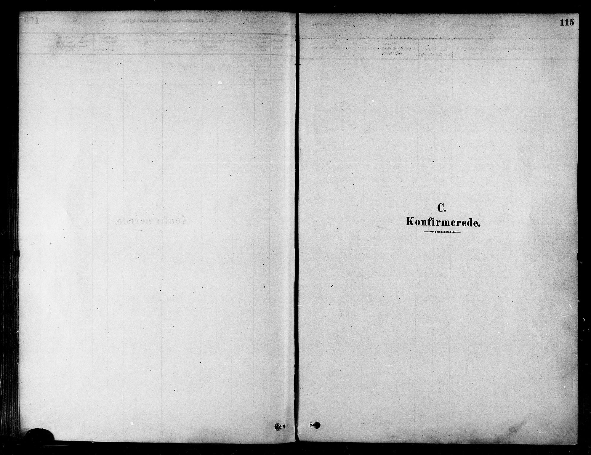 SATØ, Alta sokneprestembete, Ministerialbok nr. 2, 1879-1892, s. 115