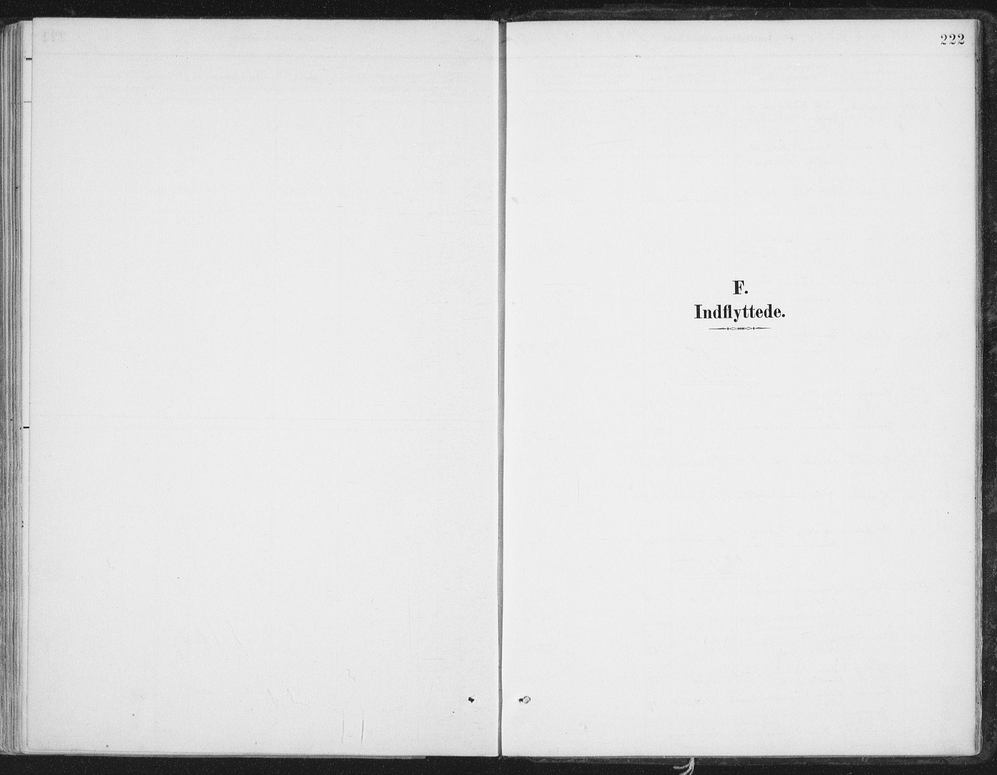 SAT, Ministerialprotokoller, klokkerbøker og fødselsregistre - Nord-Trøndelag, 786/L0687: Ministerialbok nr. 786A03, 1888-1898, s. 222