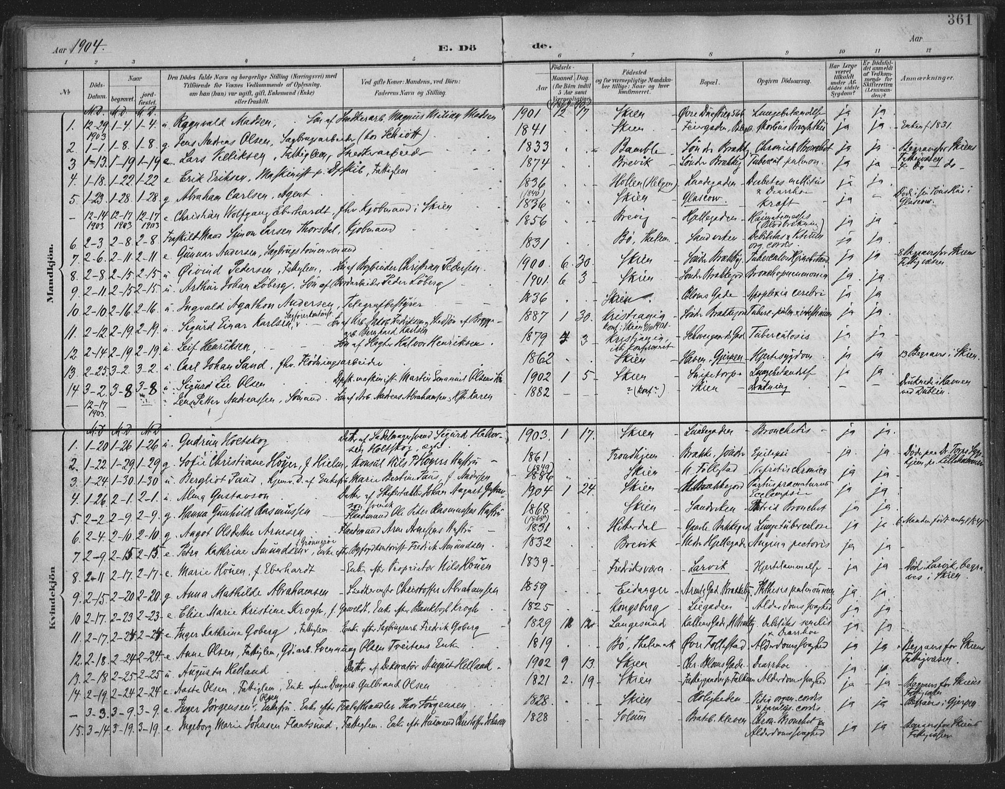 SAKO, Skien kirkebøker, F/Fa/L0011: Ministerialbok nr. 11, 1900-1907, s. 361