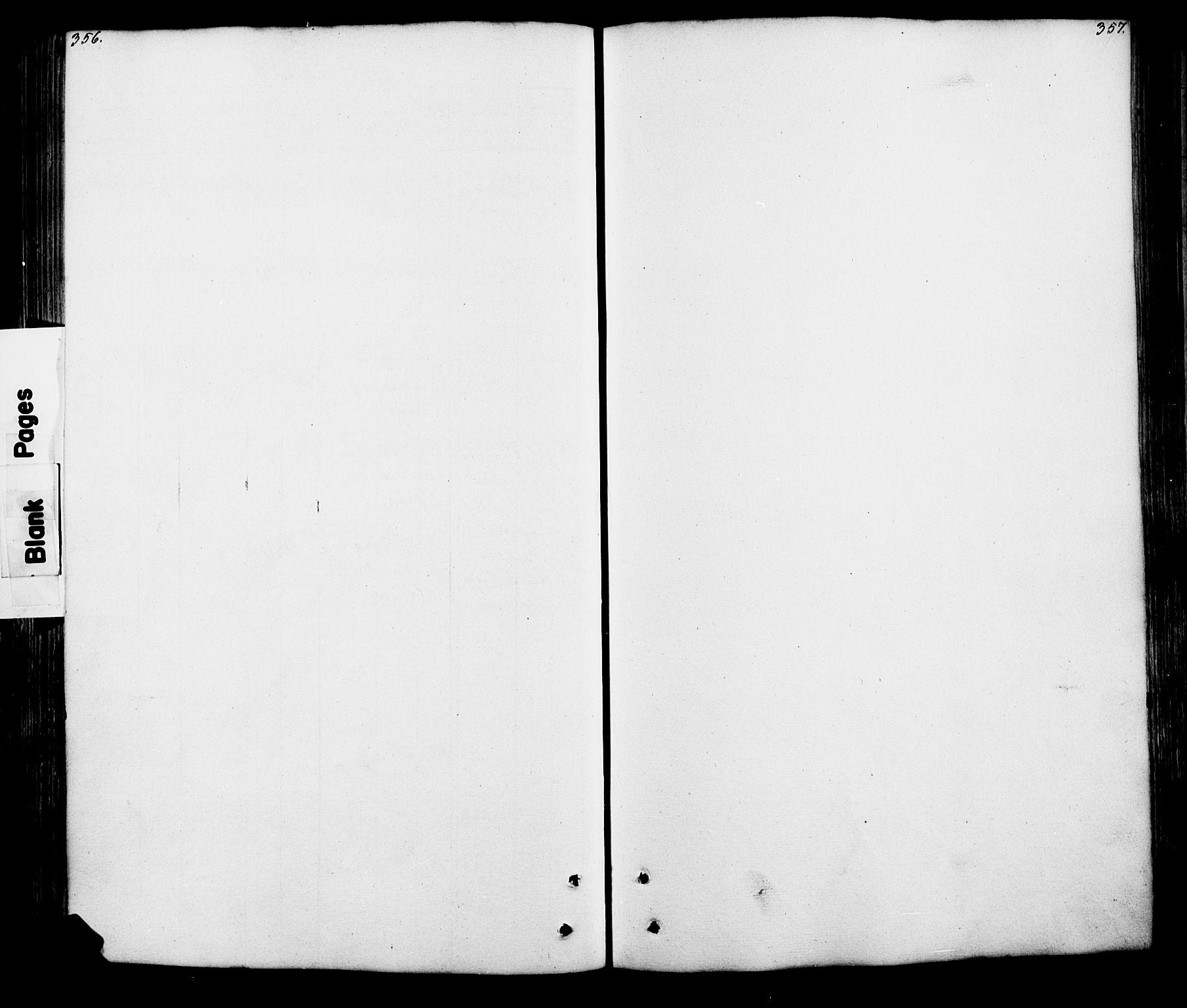 SAH, Lesja prestekontor, Klokkerbok nr. 5, 1850-1894, s. 356-357