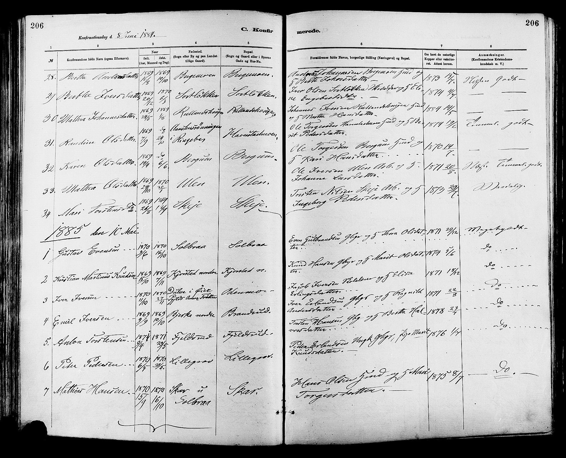SAH, Sør-Fron prestekontor, H/Ha/Haa/L0003: Ministerialbok nr. 3, 1881-1897, s. 206
