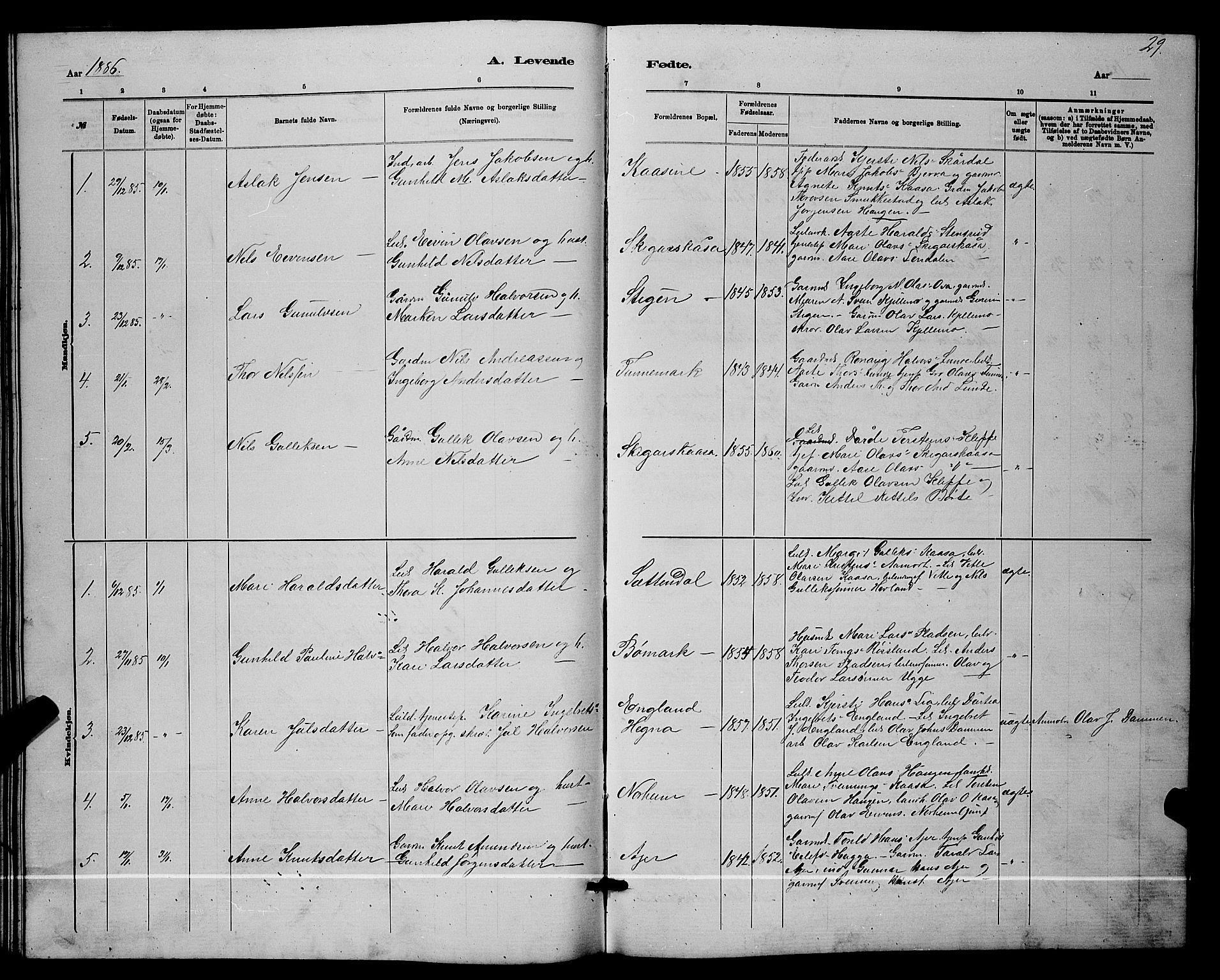 SAKO, Lunde kirkebøker, G/Ga/L0001b: Klokkerbok nr. I 1, 1879-1887, s. 29