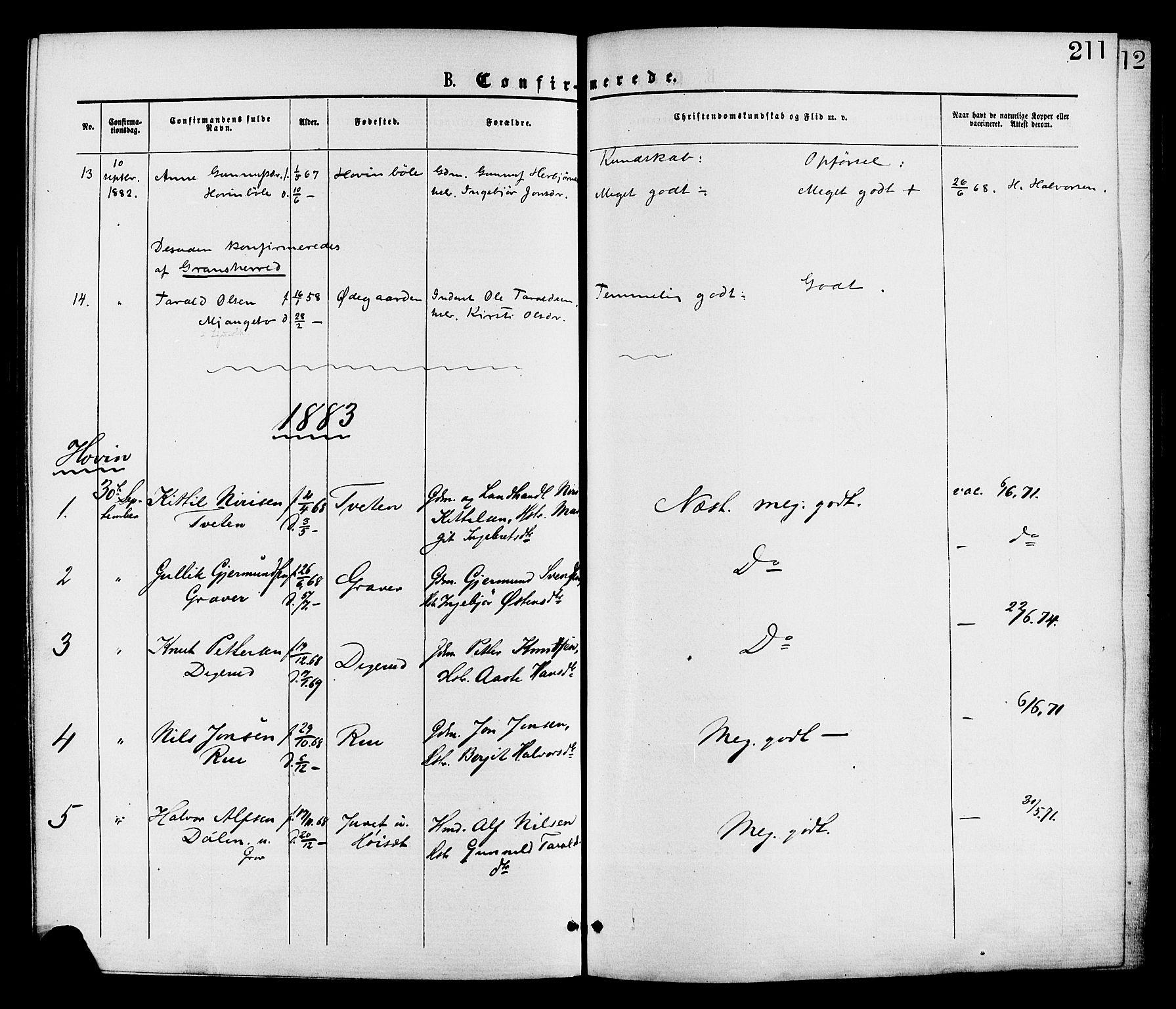 SAKO, Gransherad kirkebøker, F/Fa/L0004: Ministerialbok nr. I 4, 1871-1886, s. 211