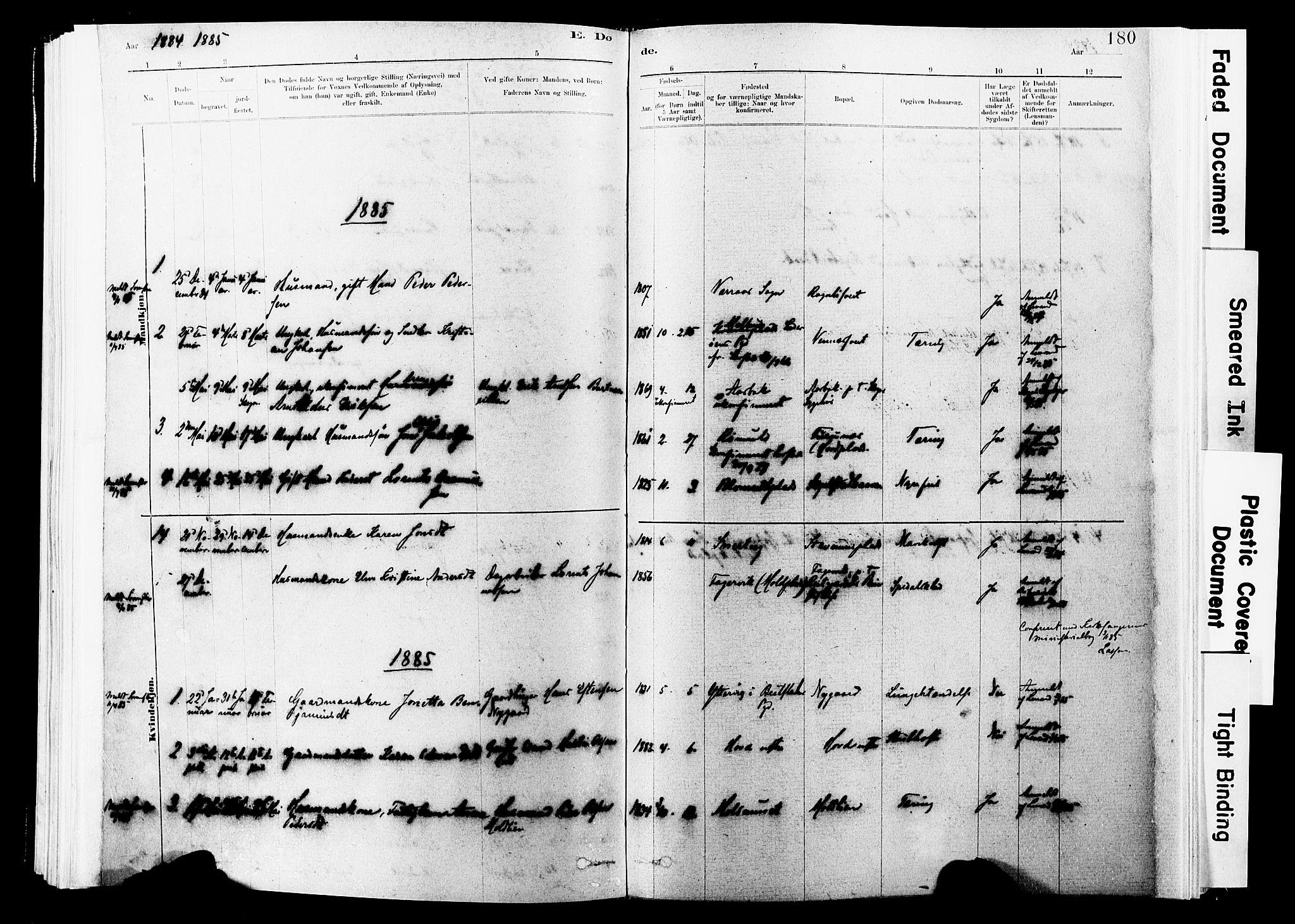 SAT, Ministerialprotokoller, klokkerbøker og fødselsregistre - Nord-Trøndelag, 744/L0420: Ministerialbok nr. 744A04, 1882-1904, s. 180